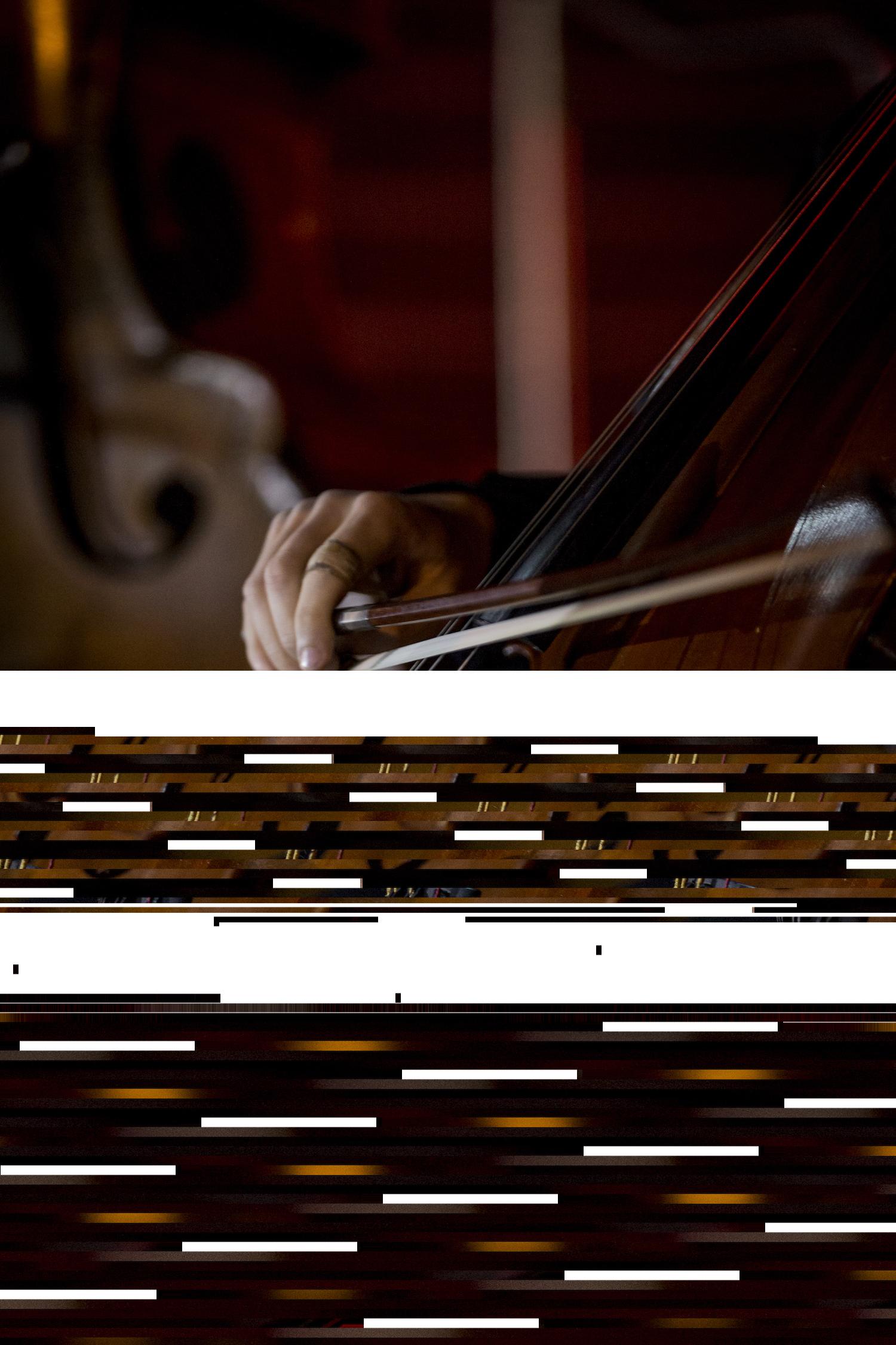 Artist: Geelong Symphony Orchestra; Photographer: Matt Houston