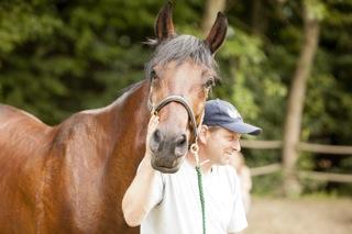 Tamanga-HORSE-fabulous-mug.jpg