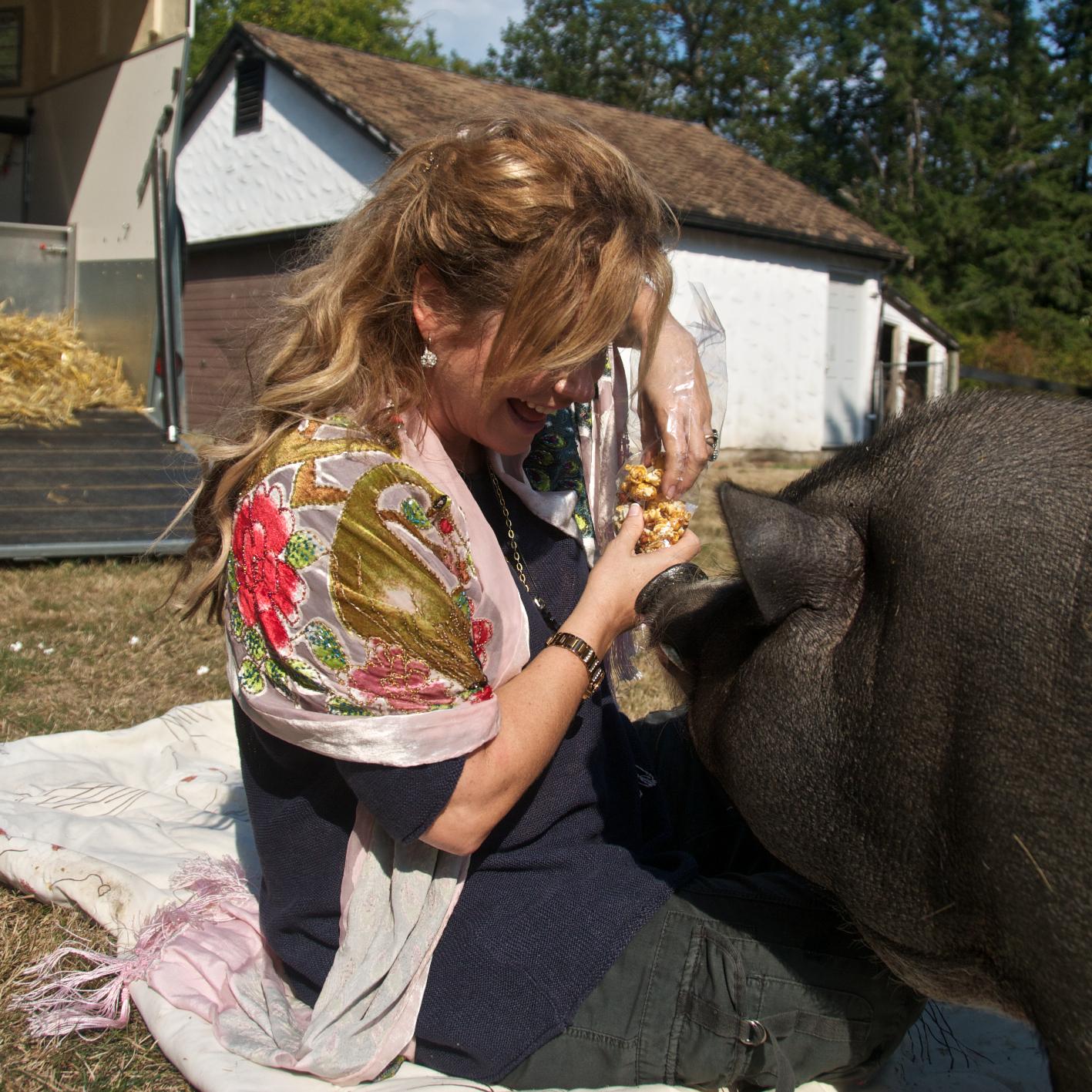 Pig 1.jpg