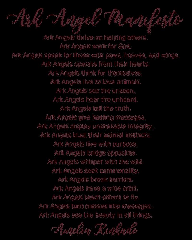 Ark Angel Manifesto.png