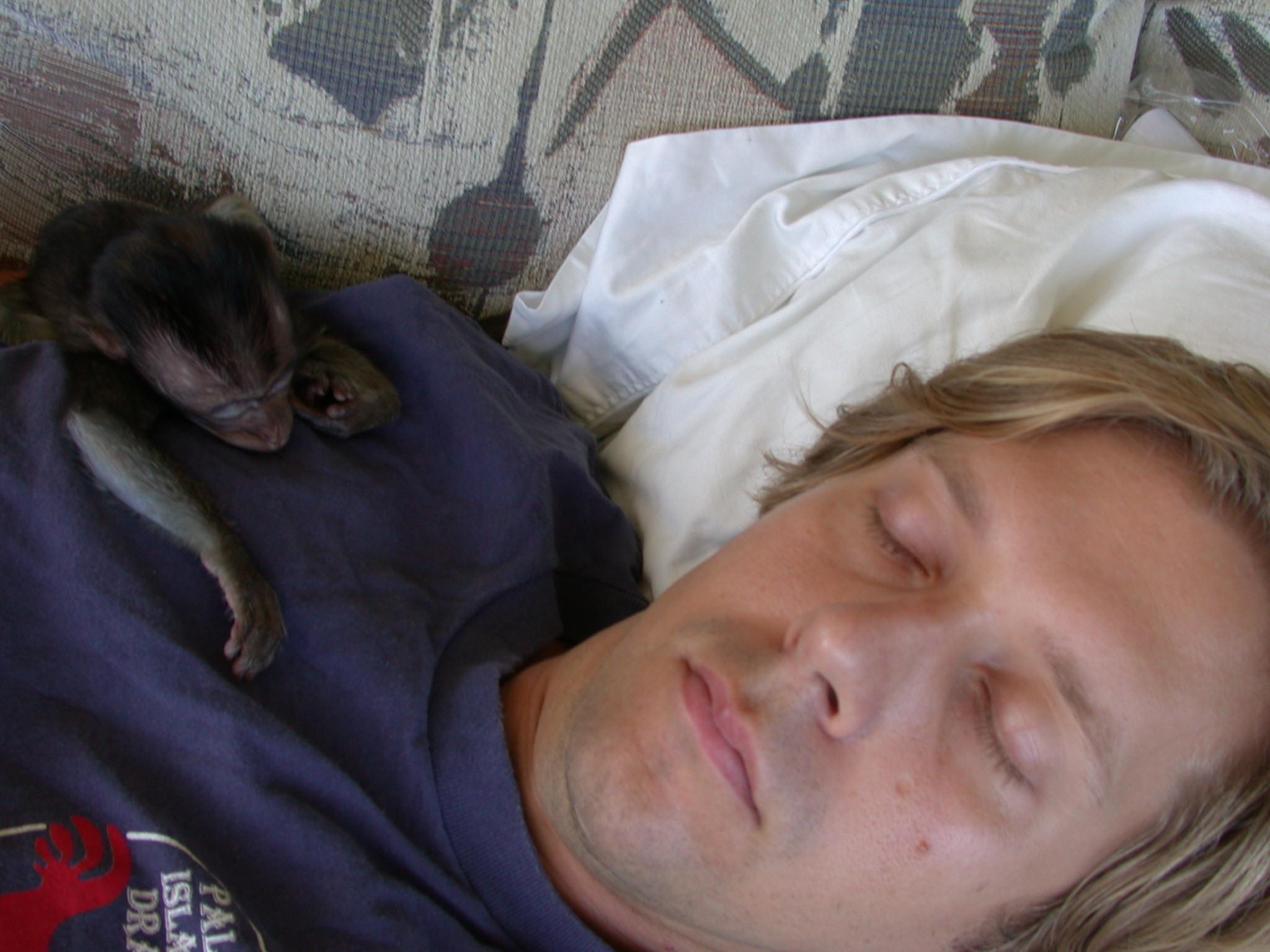 63. Sheshunoff - Monkey - Sleeping on Alex.JPG
