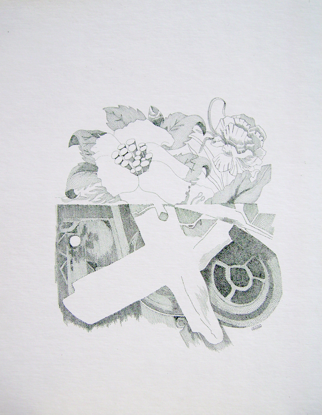Sin título, 40x30 cm, tinta sobre papel, 2012$500 (impresión en papel couché, 17x11 pulgadas).jpg