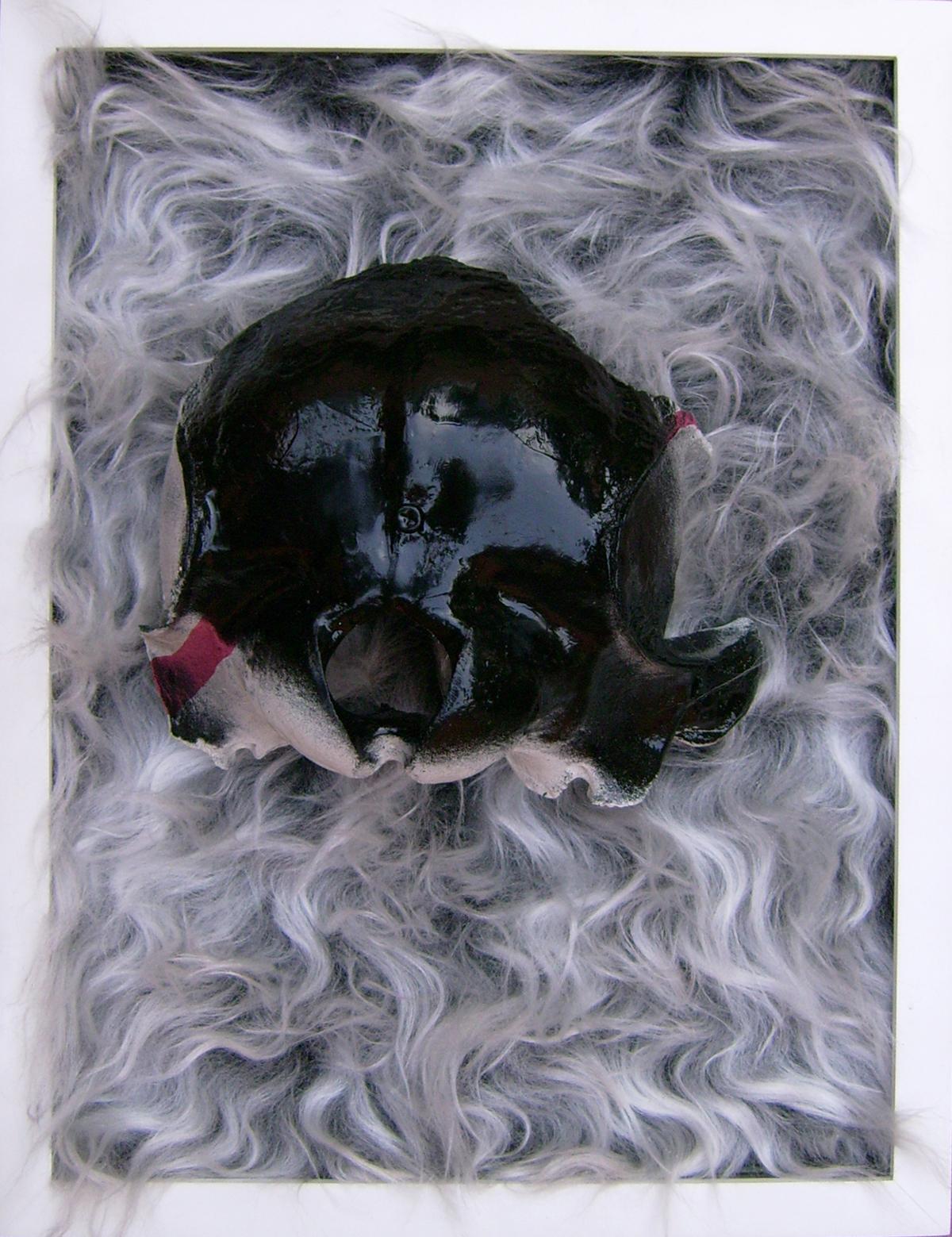 Craneo de delfín, 44x34x13 cm, hueso, felpa sintética, aerosoles y pintura de aceite, 2011, $17,000.jpg