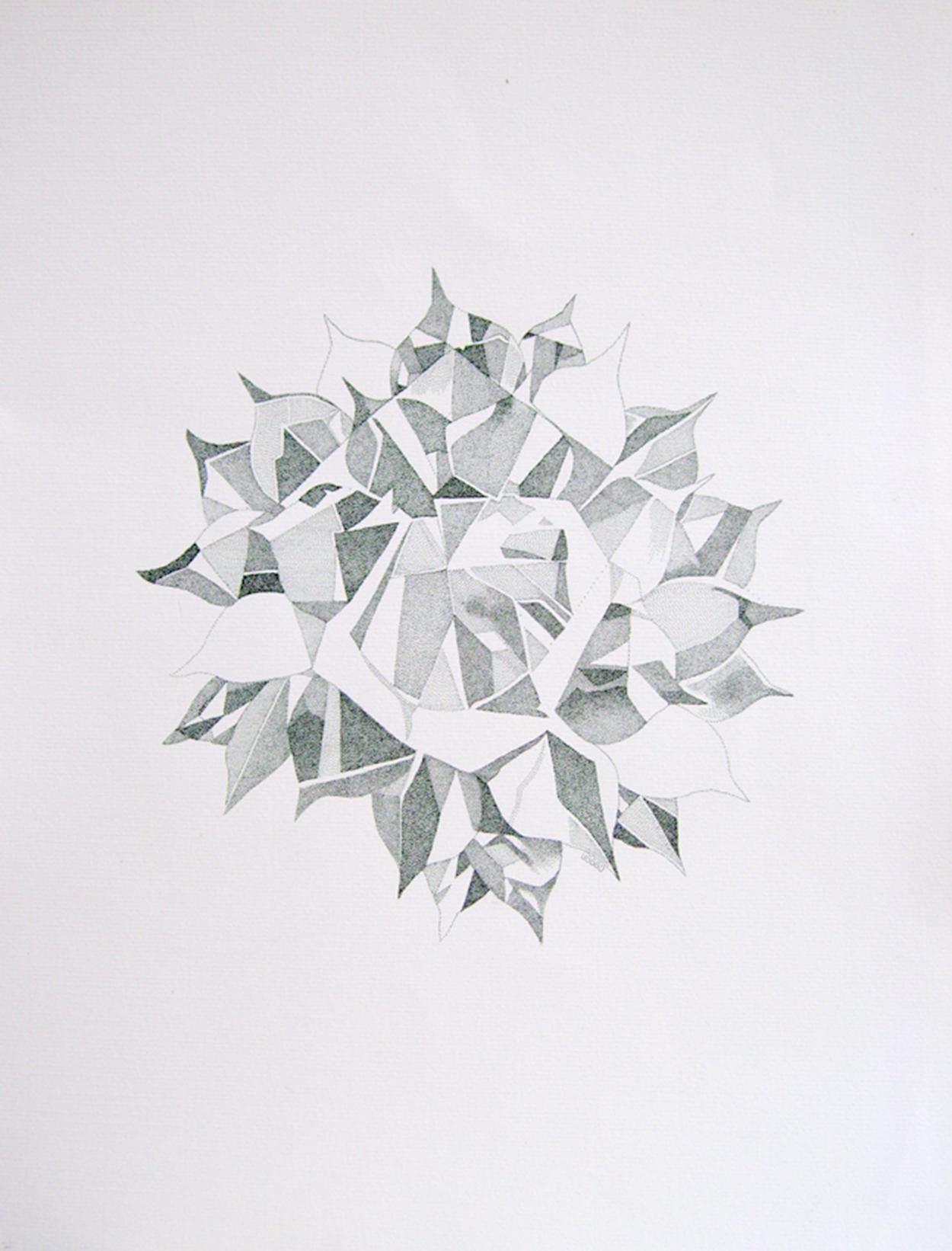 Agave, 30x40 cm, tinta sobre papel, 2013, $500 (impresión en papel couché, 17x11 pulgadas).jpg