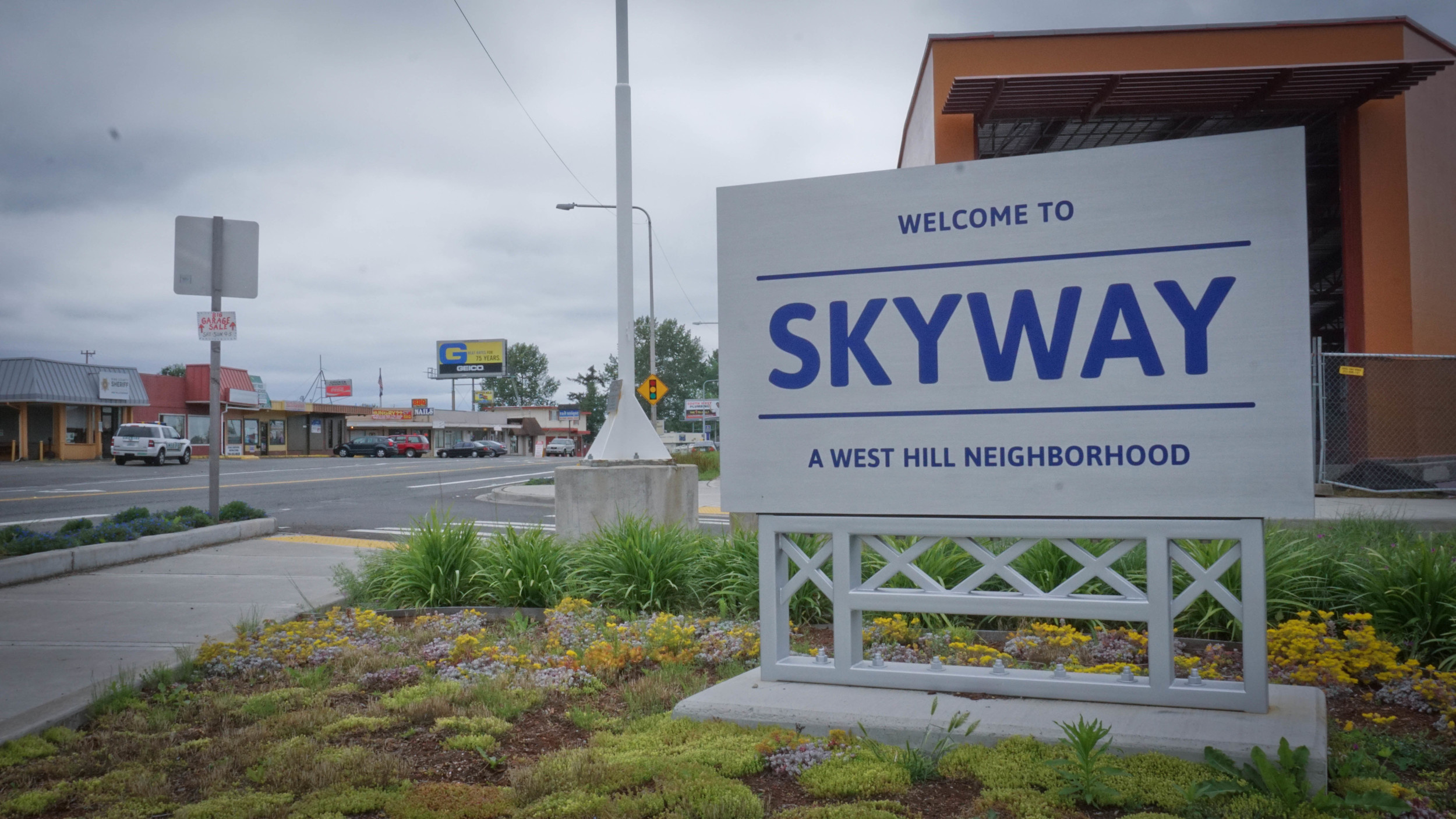 Why Skyway?