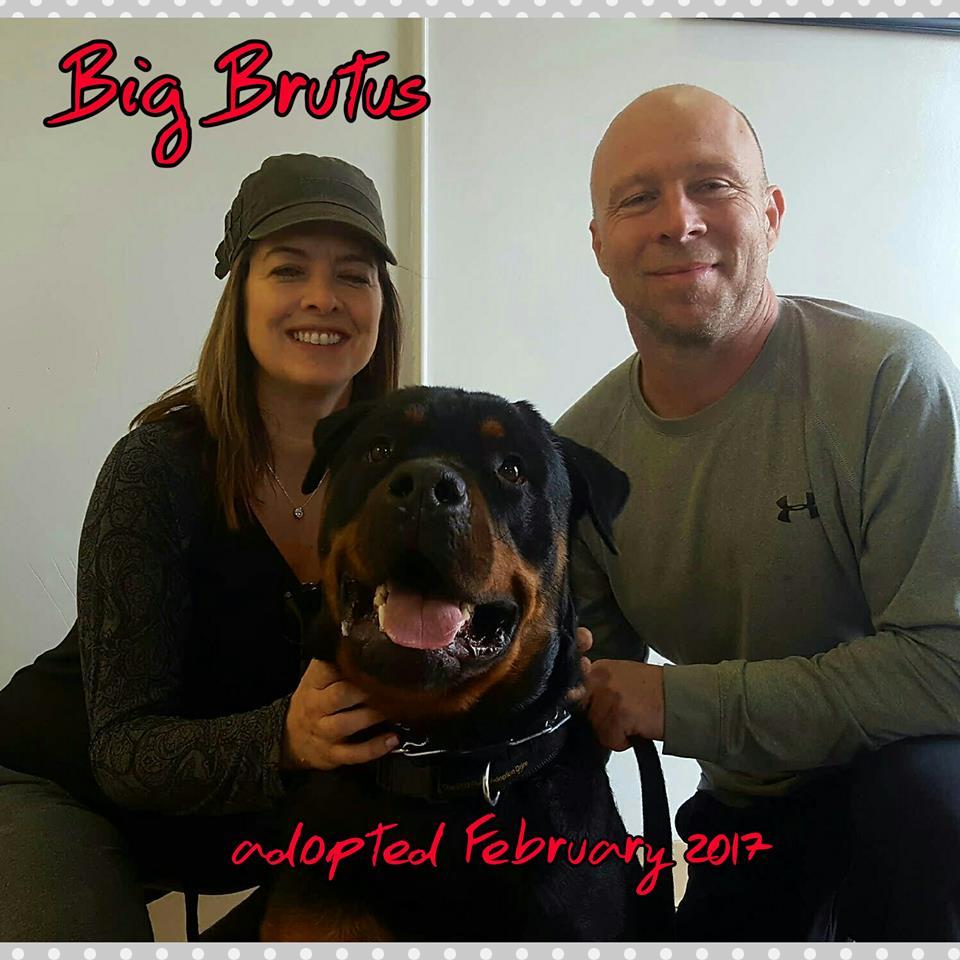 big brutus adoption.jpg