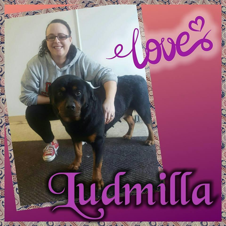 ludmilla adoption.jpg