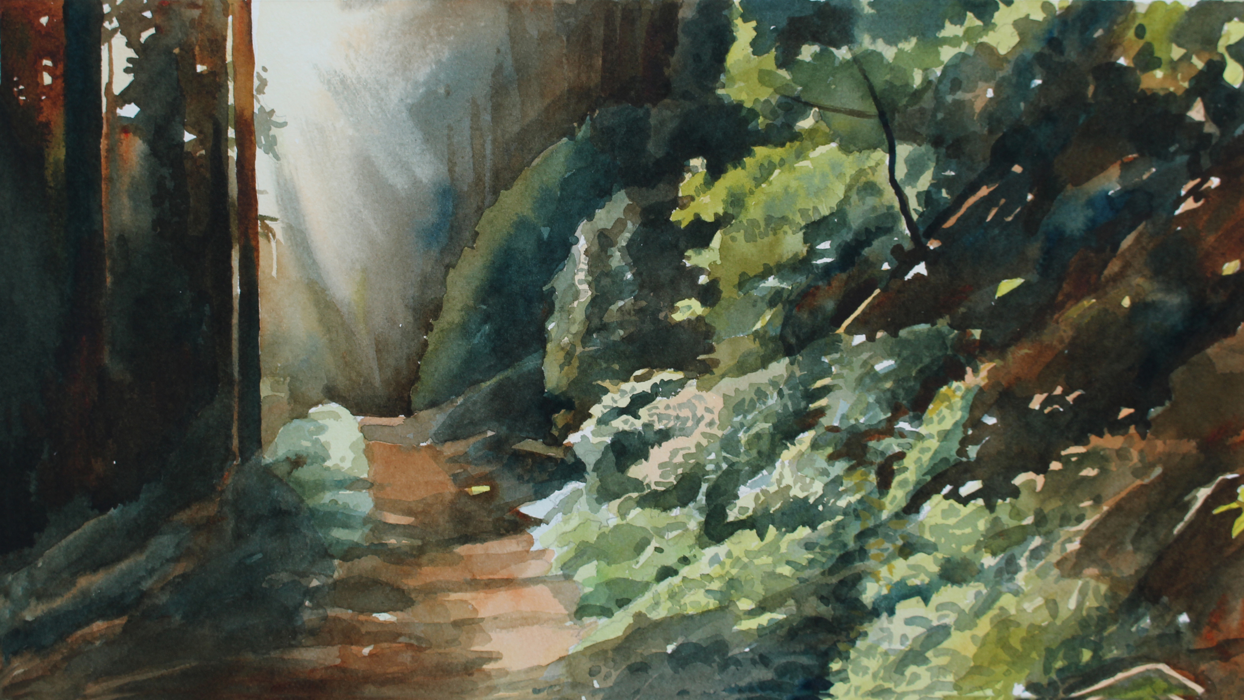 Susan Abbott's watercolor painting - dawn on the PCT near Mt. Adams Wilderness.