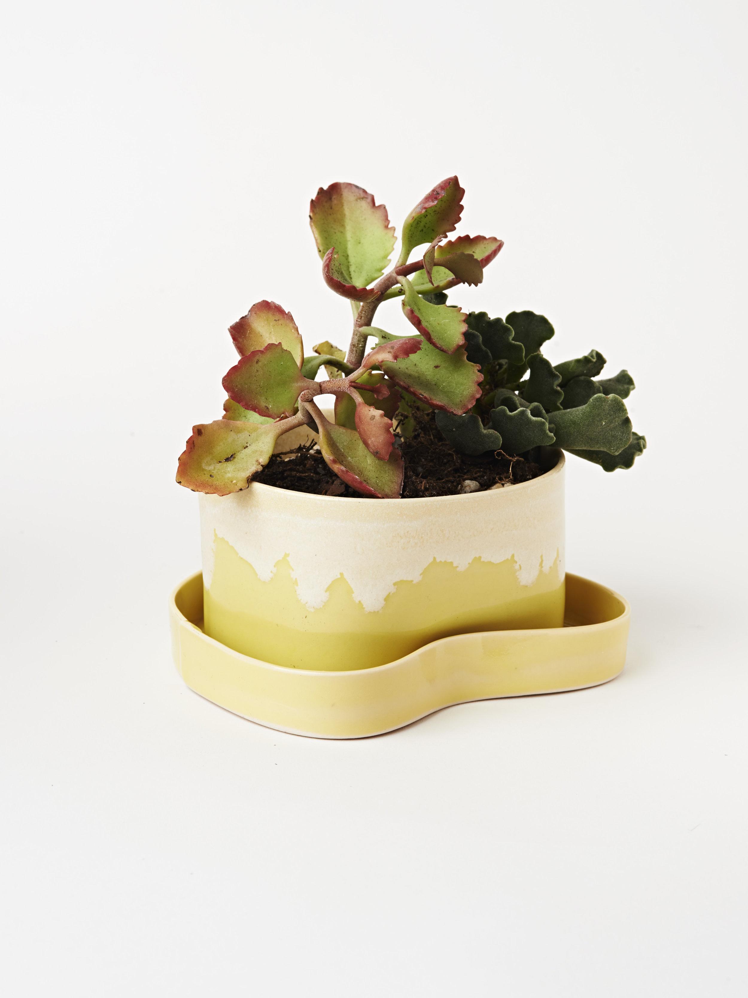 Planter w/ Tray - Bright Yellow