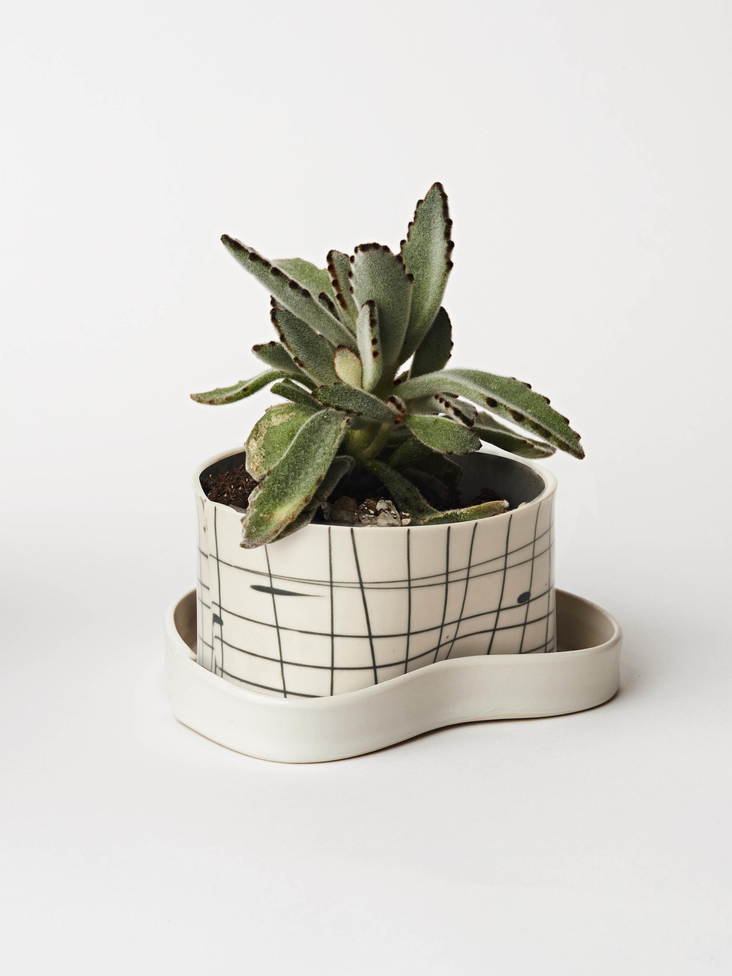 planter workshop.jpg