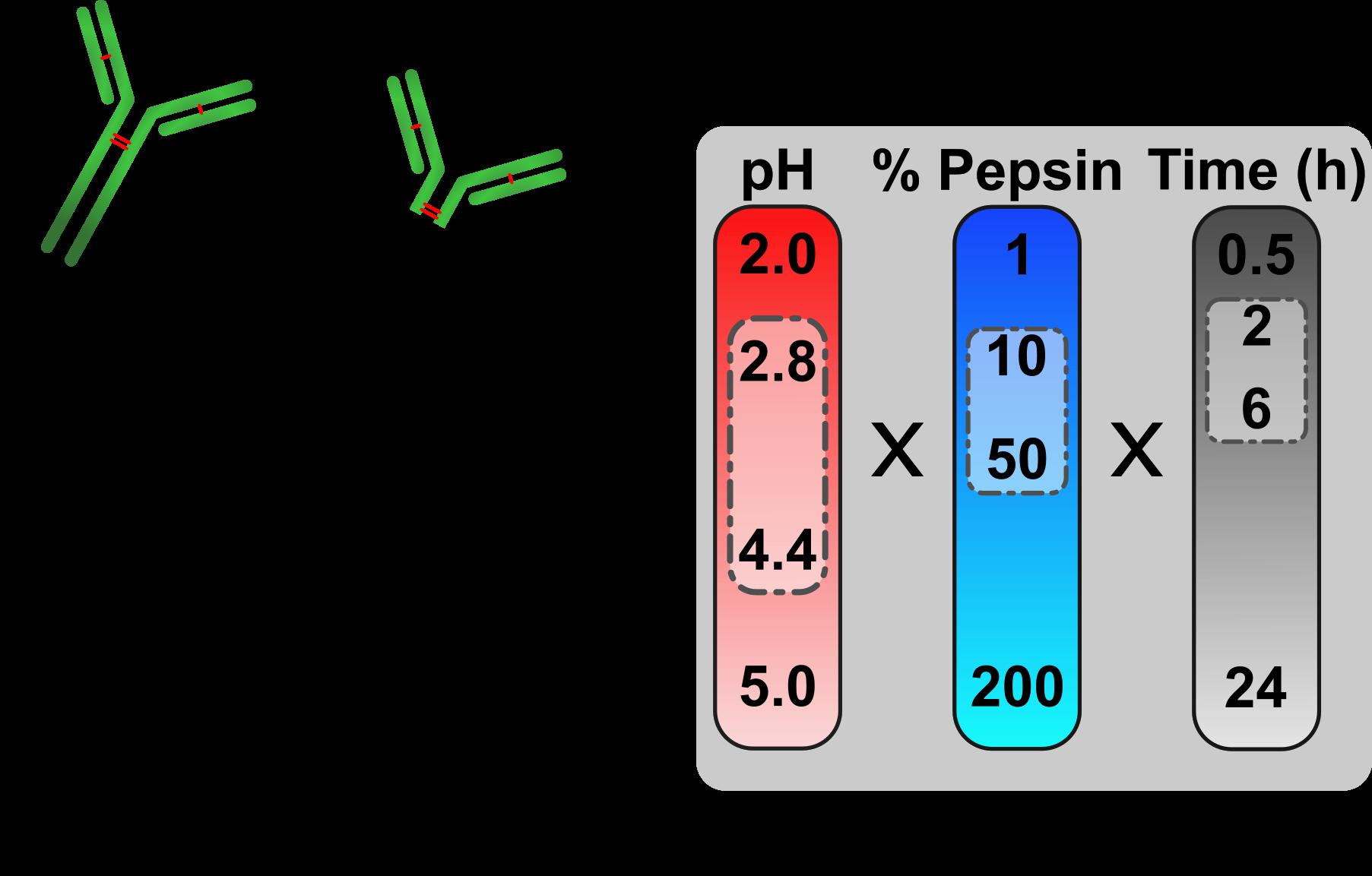 Making antibody fragments just right - Kinman AWL & Pompano RR.