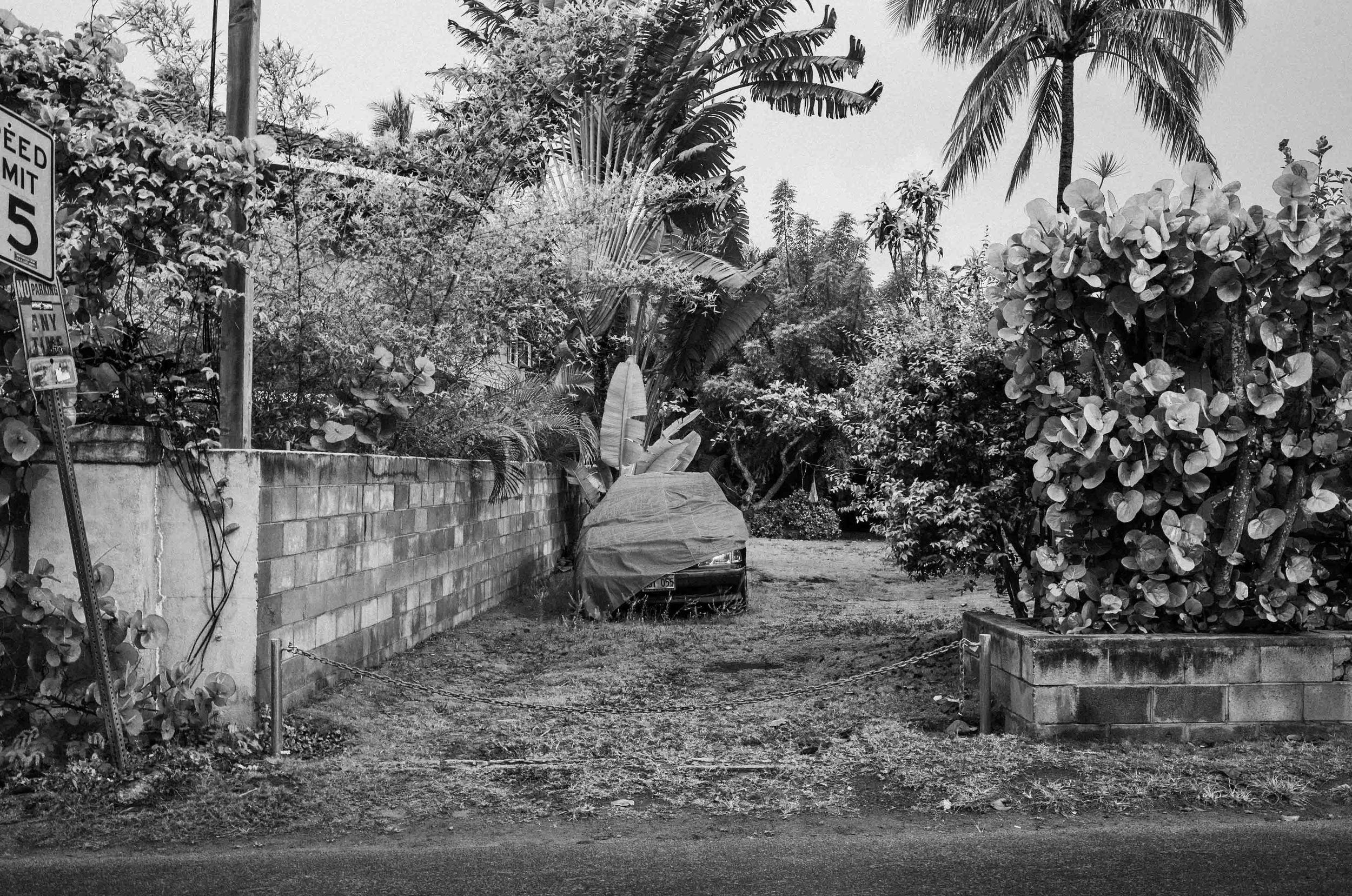 Aloha_Mahalo-13.jpg