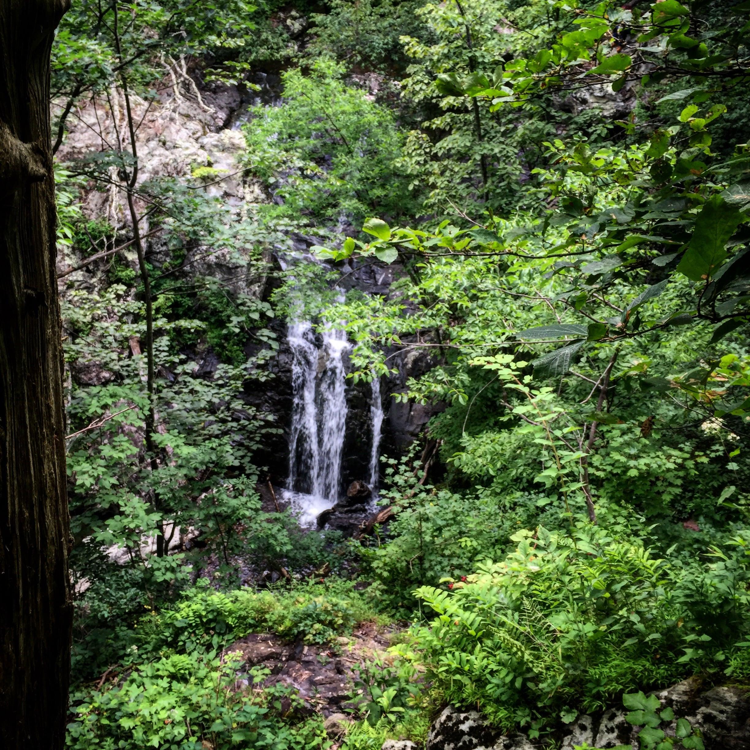 Mid-summer trip to White Oak Canyon.