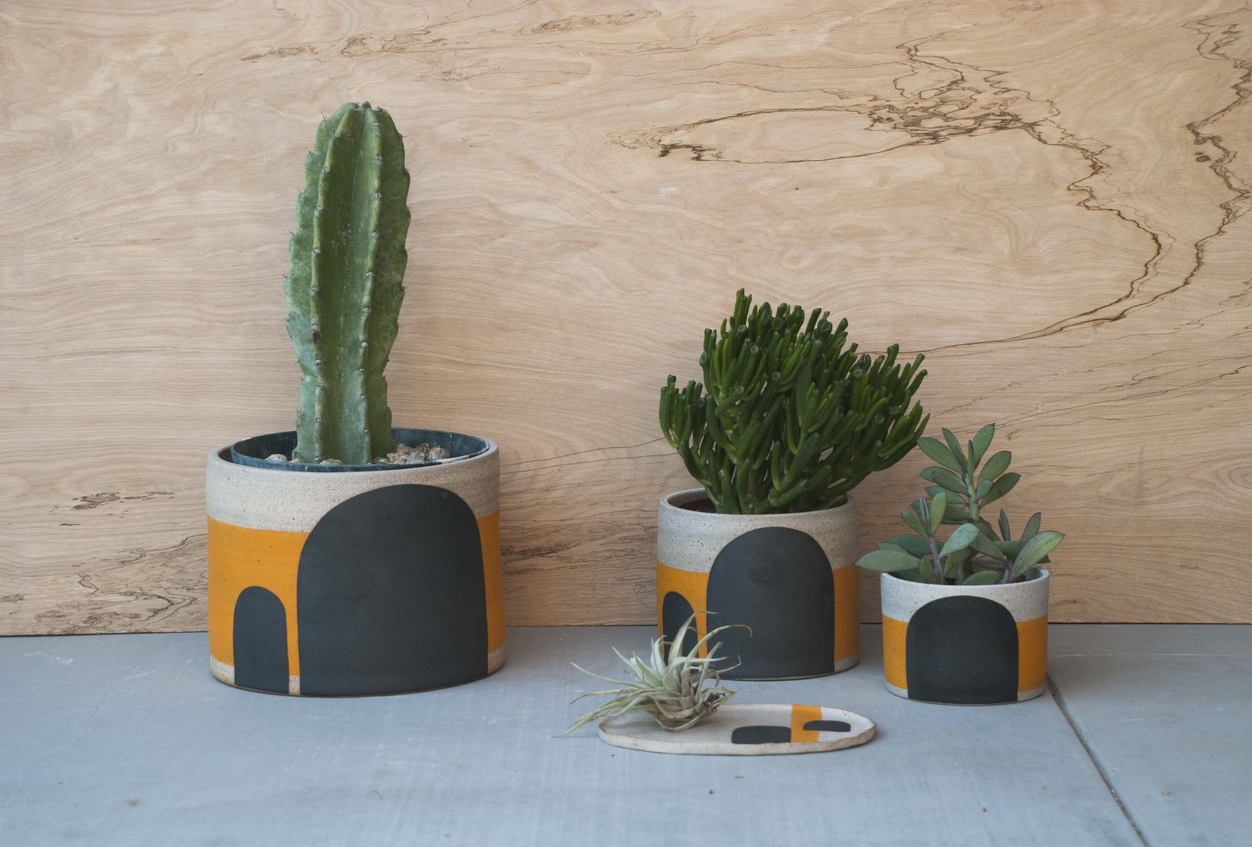 Potted planter01.jpg