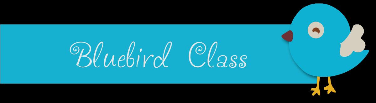 bluebirdheader.png