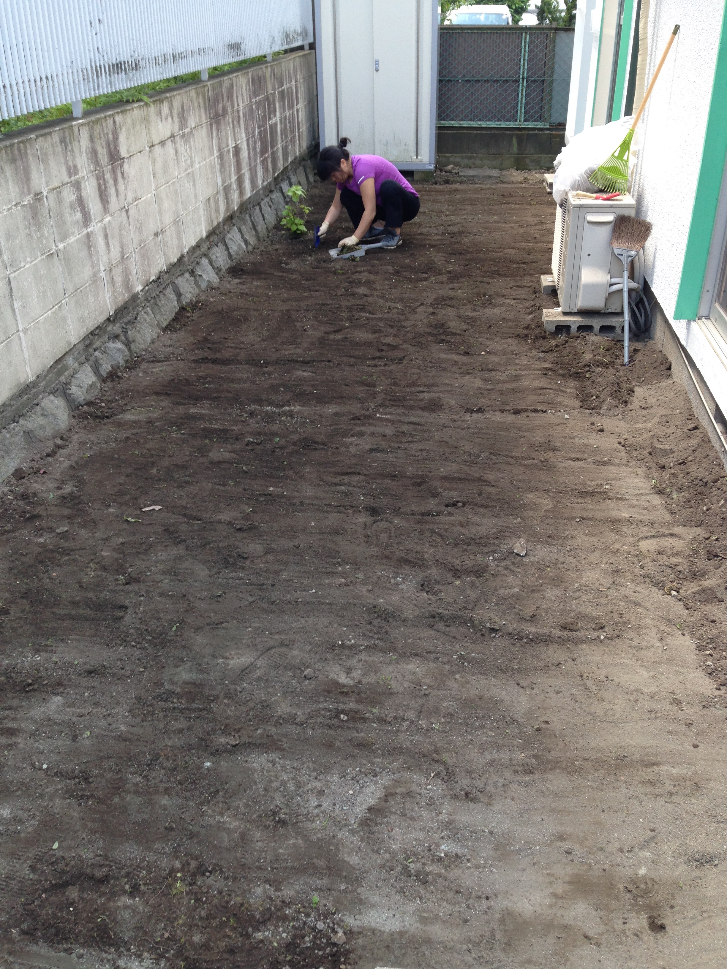 Leveling the Ground