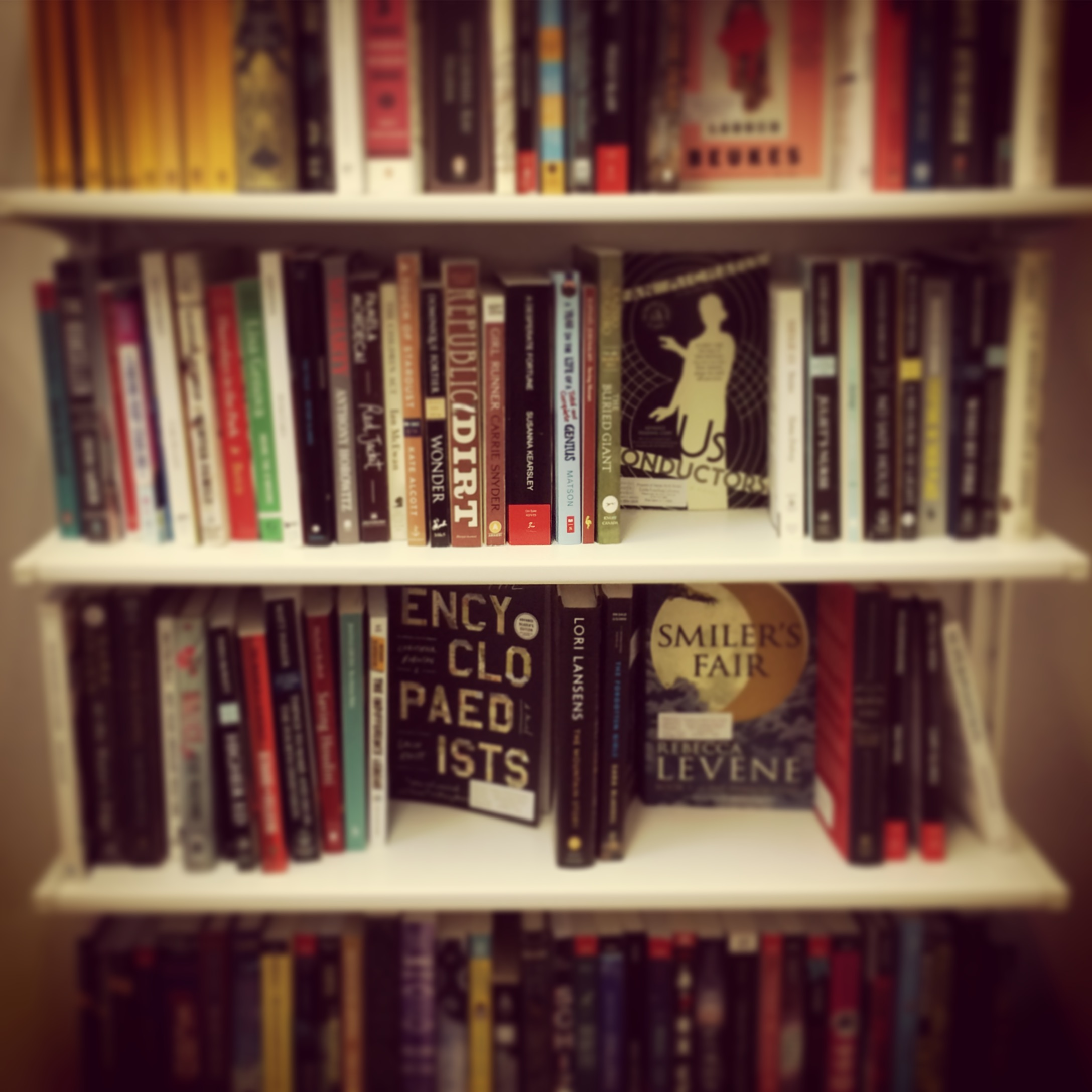 Little-Lending-Library-with-filters.jpg