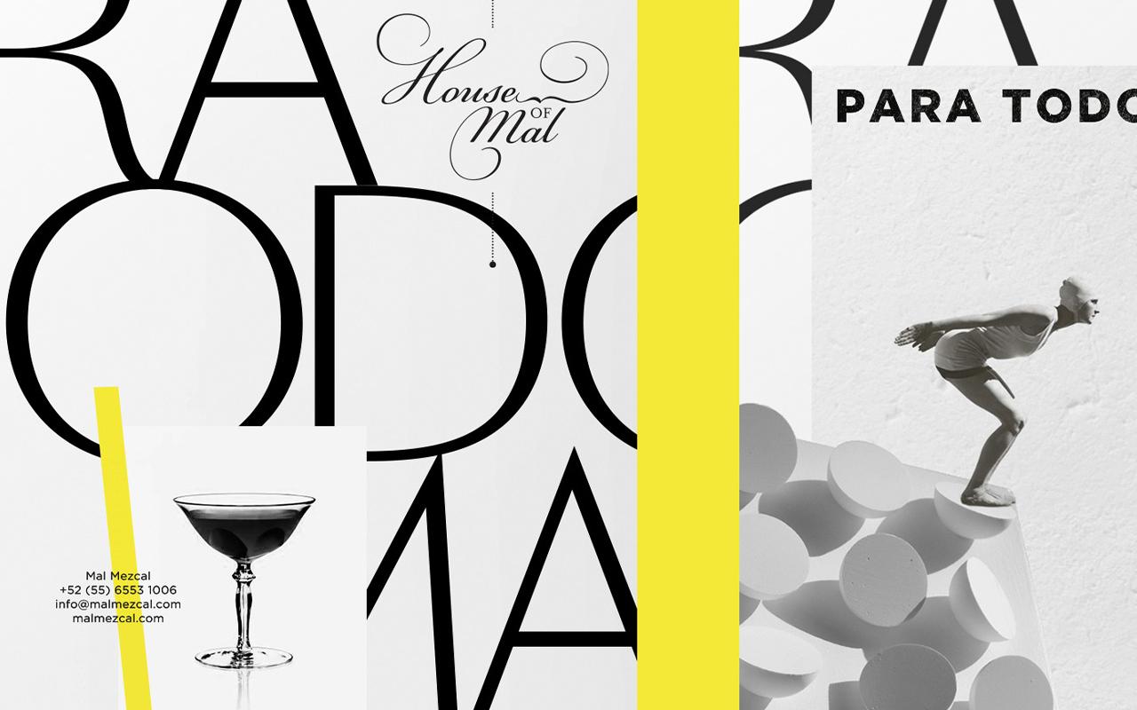 mal-mezcal-packaging-spirits-alcohol-labels-a-ya-design-galia-rybitskaya.jpg