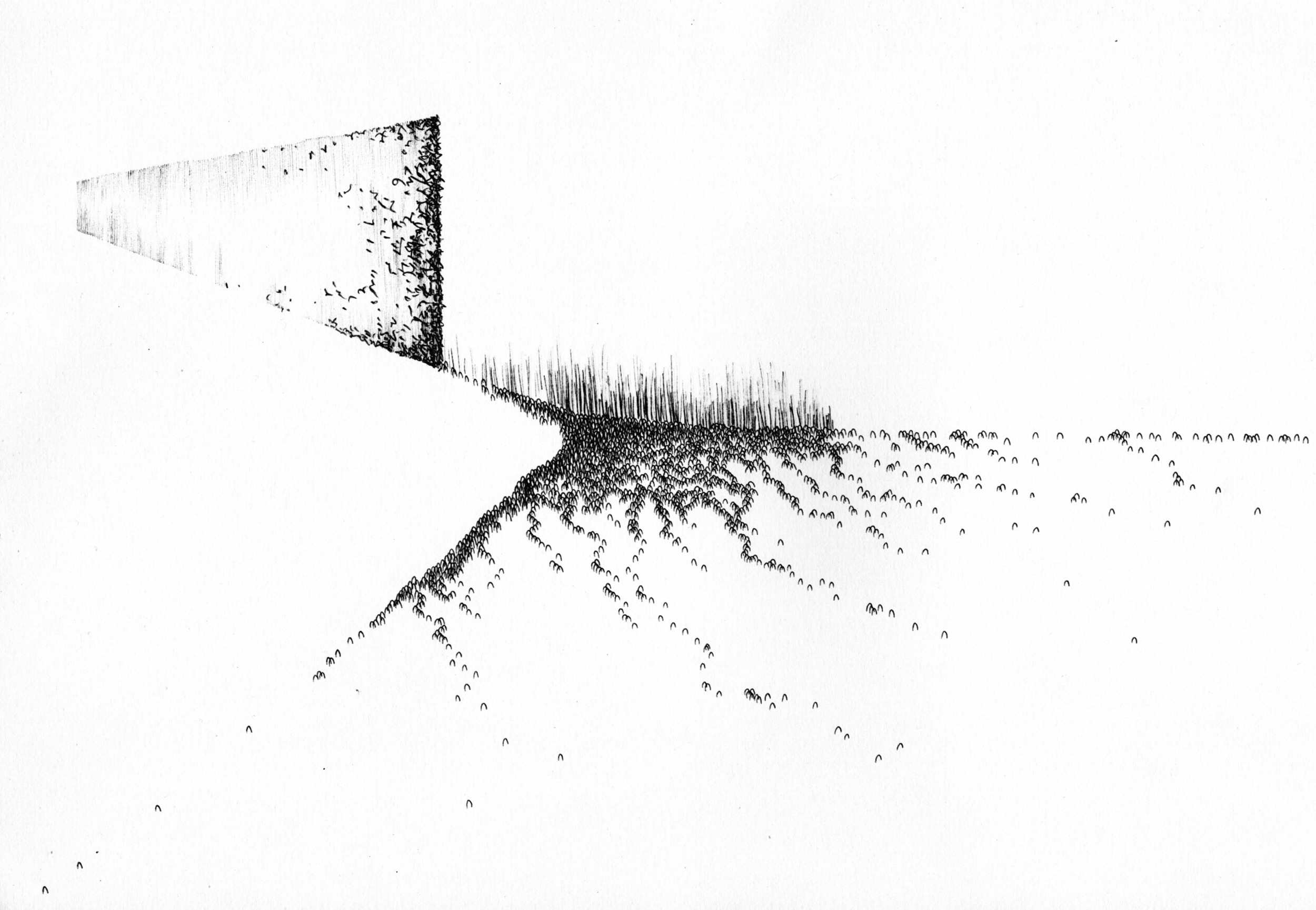 Simon Woolham, Parting, Biro on Paper, 2011.jpg