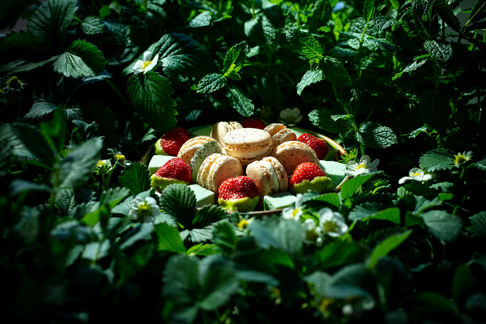 Franck_Hamel_food_photographer_photographeculinaire_valerie_paumelle_agent_st_clair_traiteur (11).jpg