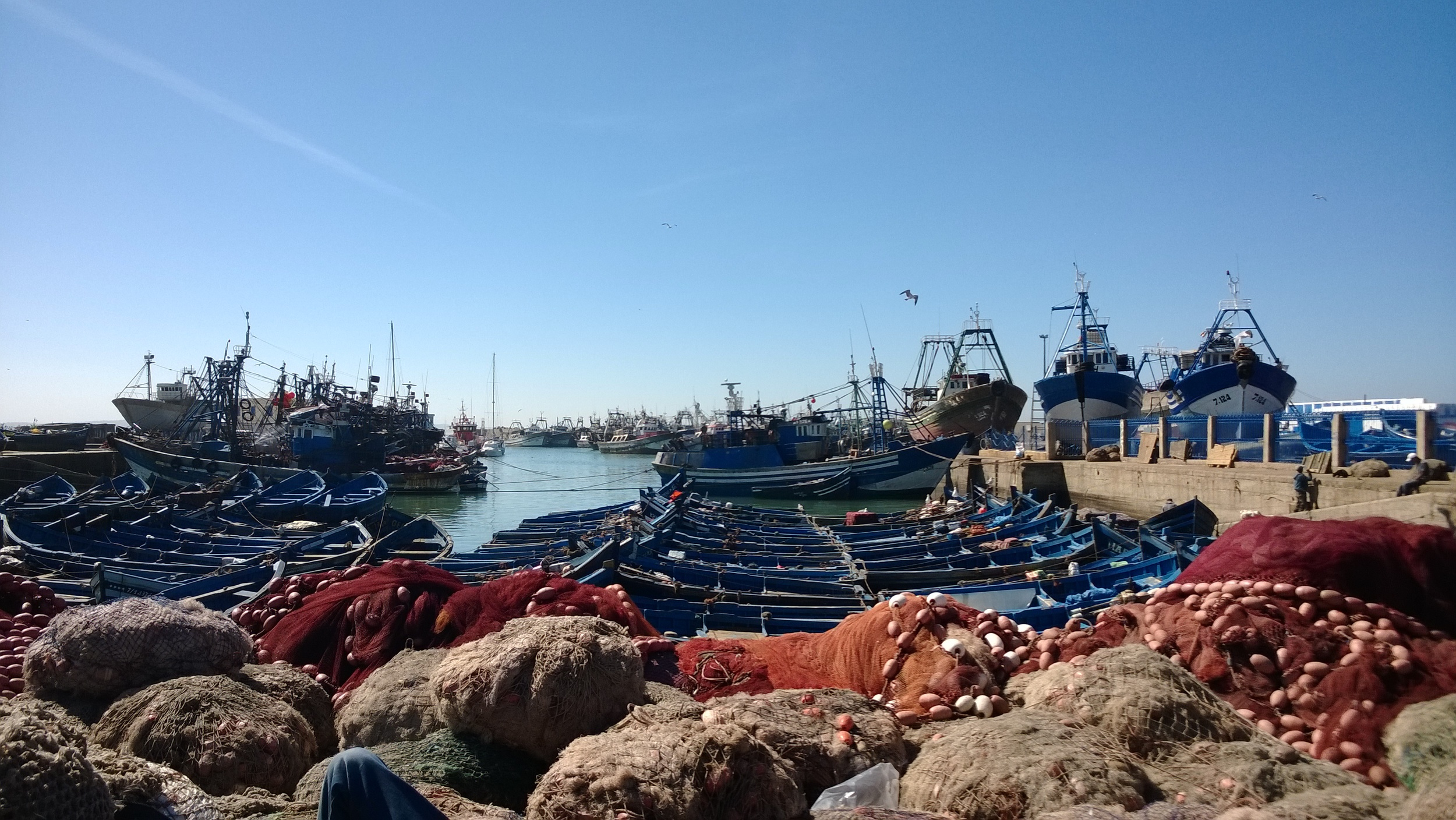Fish boats at ESSAOUIRA