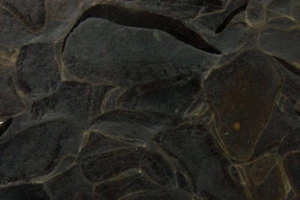 bio glass - fossil amber.jpeg