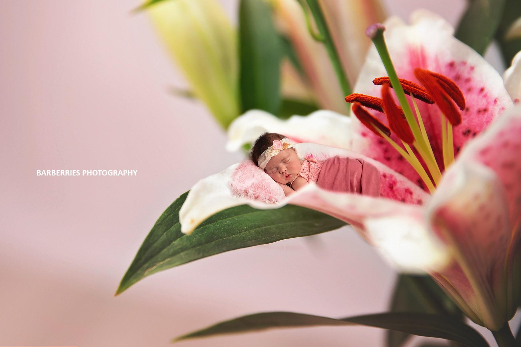houston-newborn-photographer-fine-art-fancy-unique.jpg