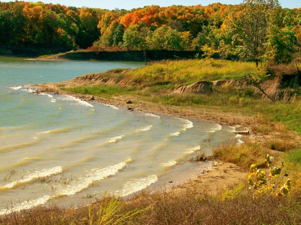 Shoreline in the Fall