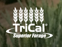 Trical logo.png