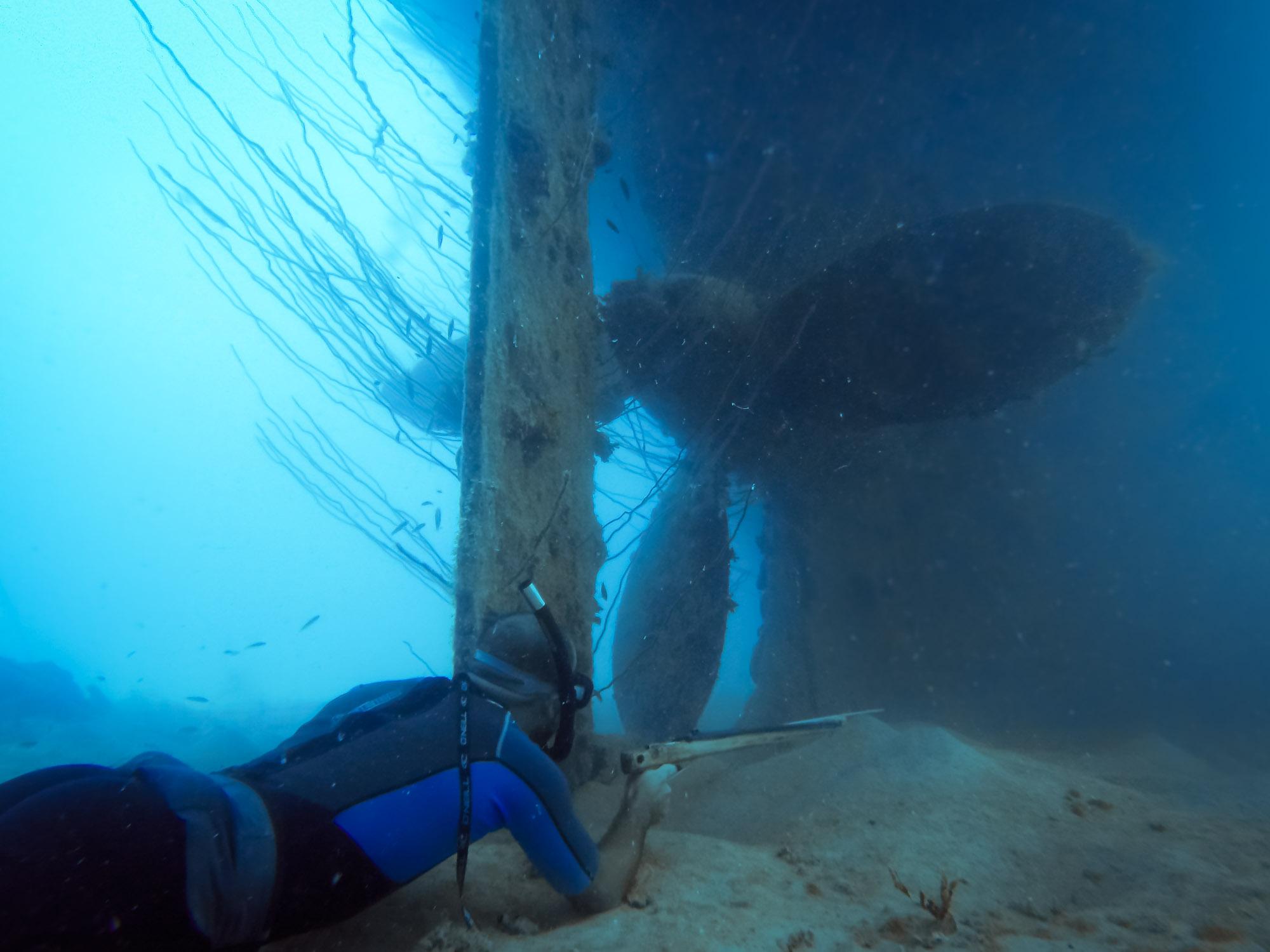 Spearfishing alongside the rudder and massive propeller of the Terushima Maru