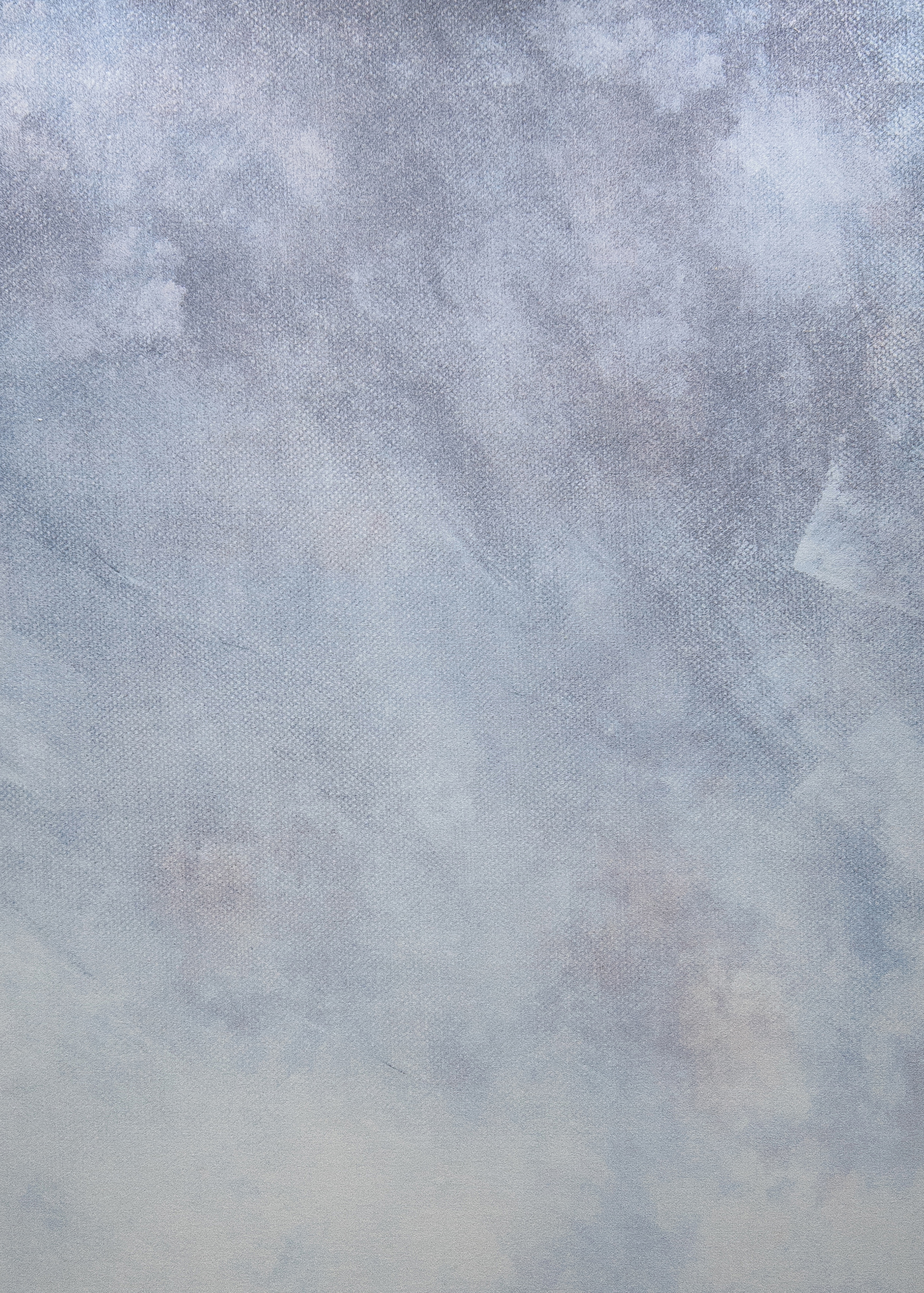 Sky Carpet Closeup.jpg