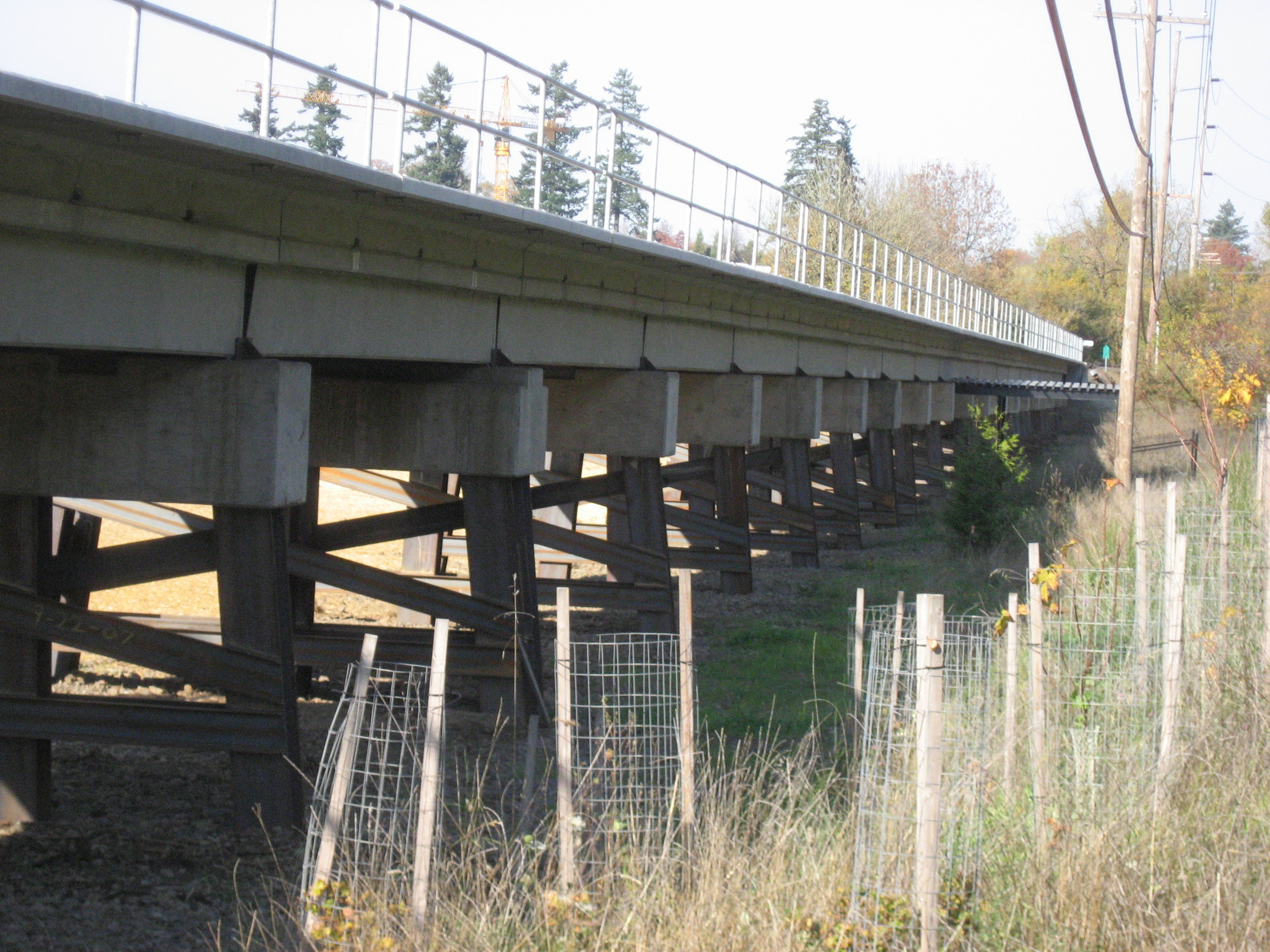 Tualatin River N Approach Rail.JPG