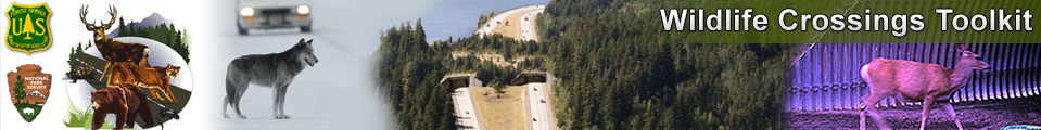 Click here to check out the Wildlife Crossings Toolkit