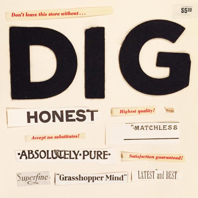 Dig Vol. 1