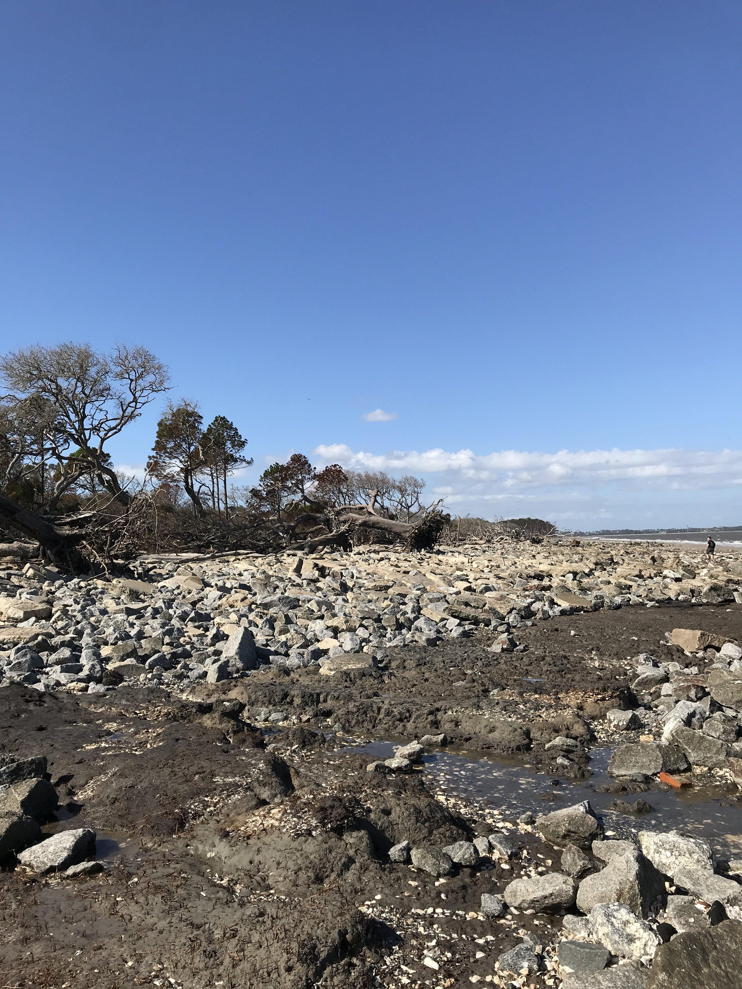 Driftwood Beach post Irma.