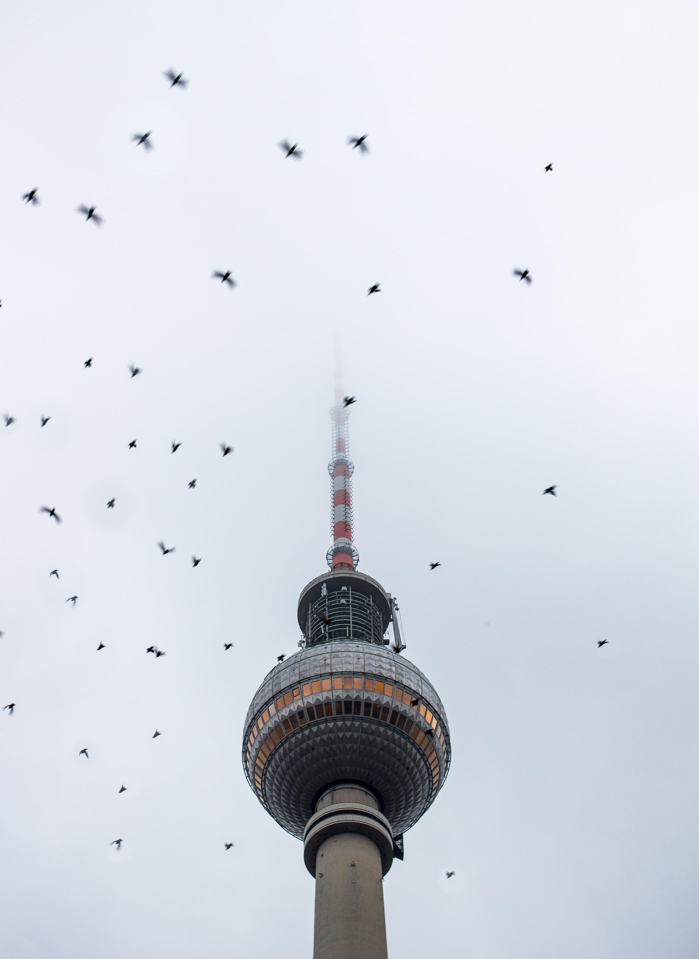 berlin_IG+%281+of+4%29.jpg