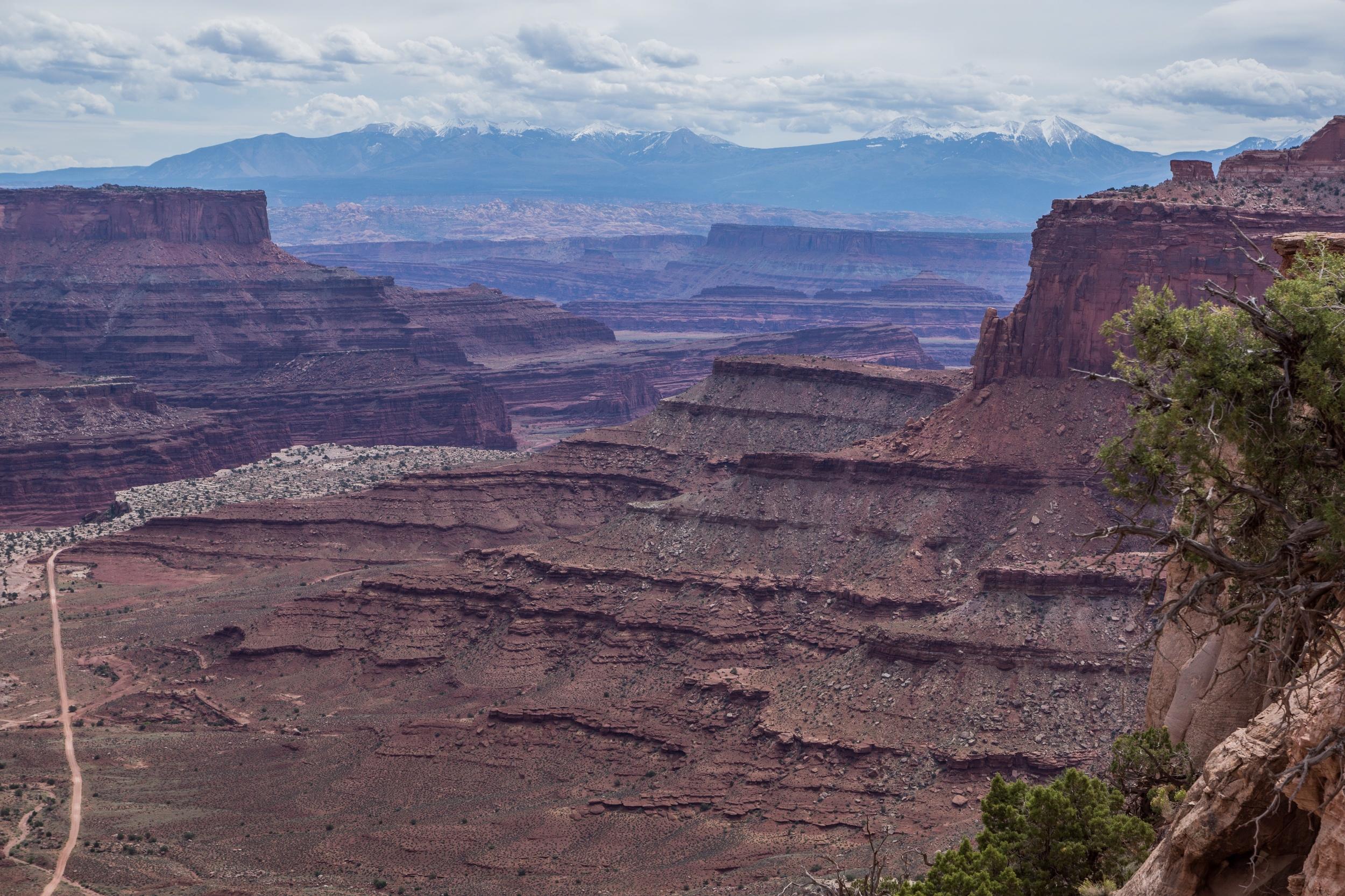 Then to Canyon Lands   Photo by Jeff Fox (  @foxonarock  )