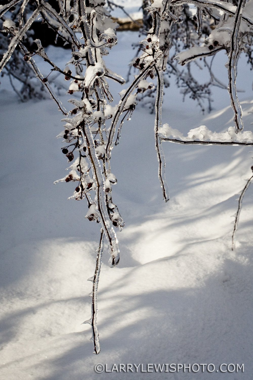 BirchmountPark4.jpg
