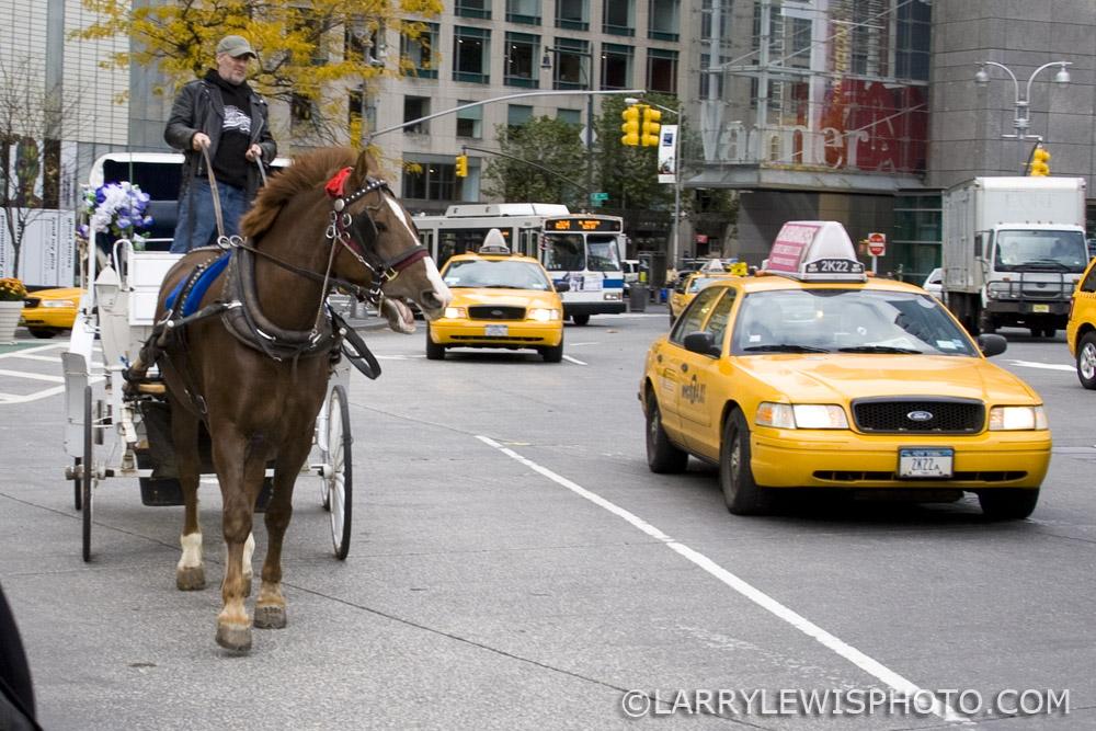 NY_transport.jpg