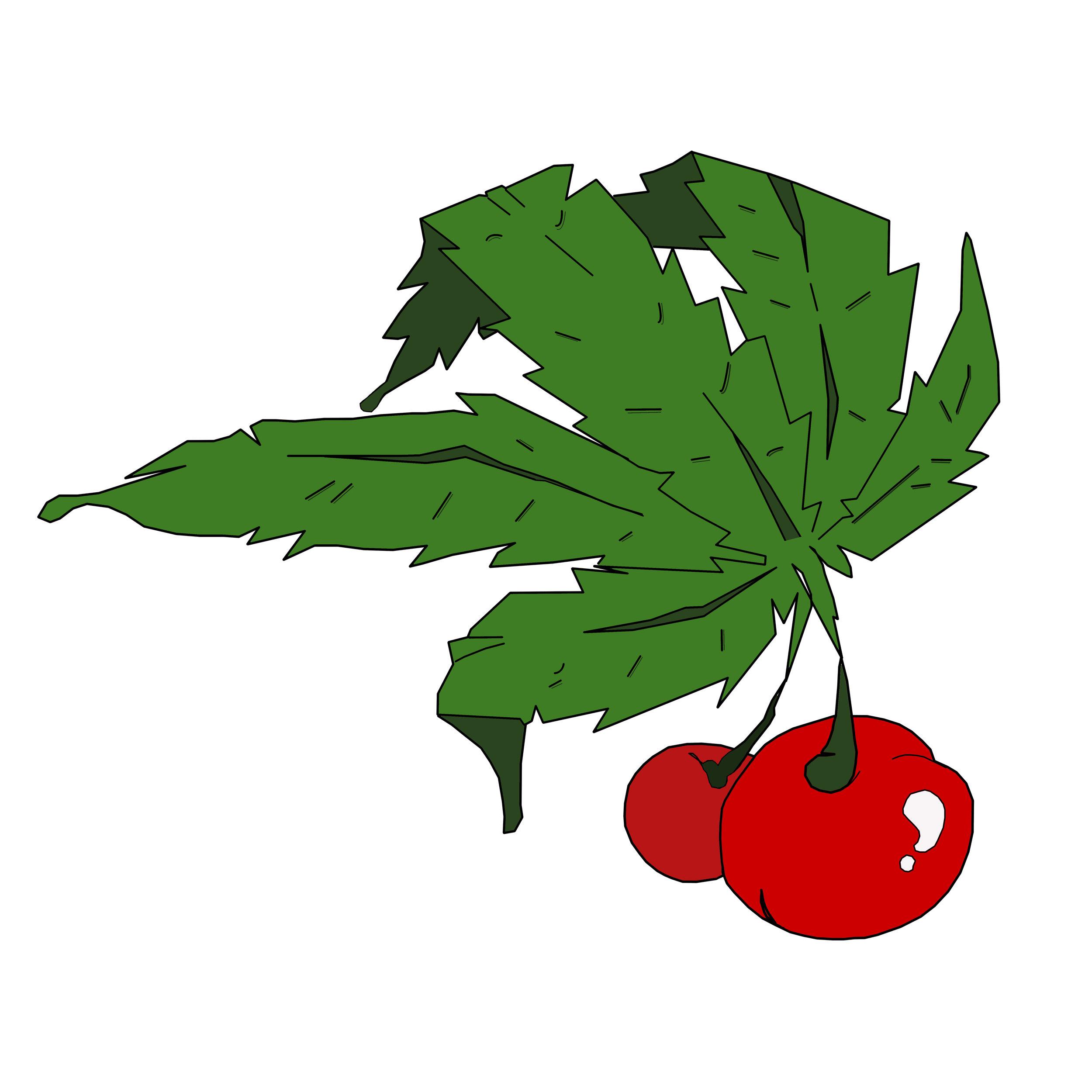 cherrygarden.jpg