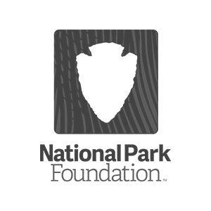 Logos_Donations_NPF.png