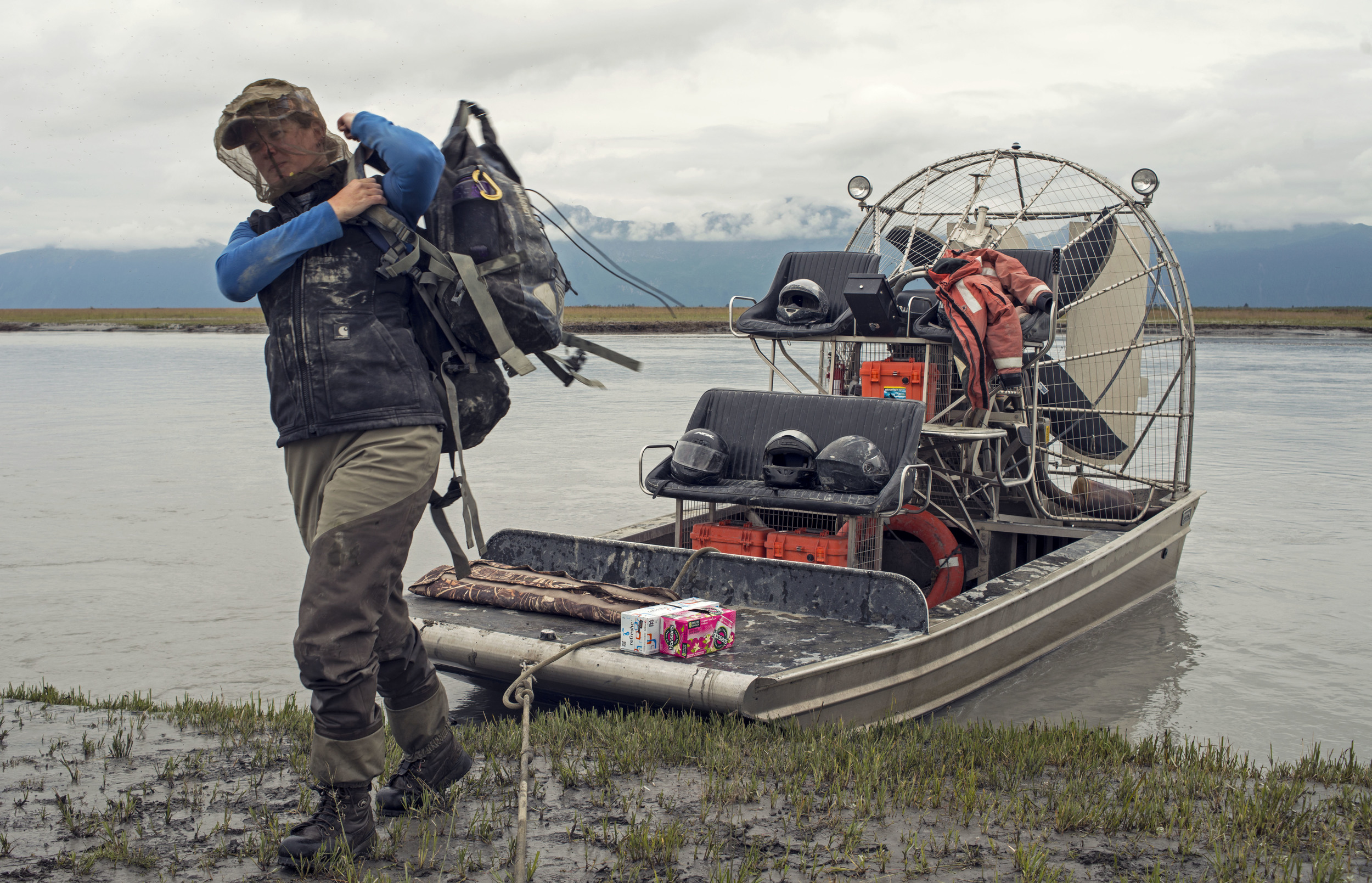 Melissa Gabrielson parks the airboat and carries her gear towards the banding area, where she will work with a group of volunteers for approximately eight hours banding dusky Canada geese.