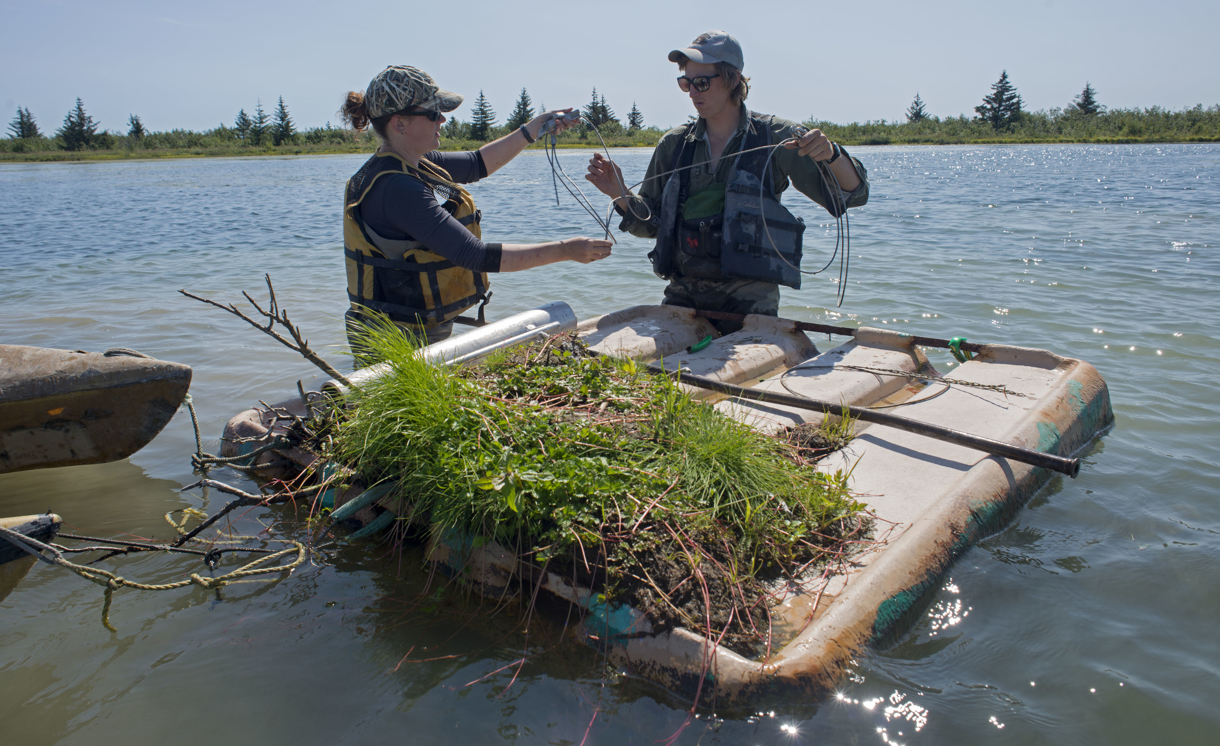 Melissa Gabrielson and Dan Jenkins attach new anchoring to a nest island. Anchors on the floor of the pond keep the island from drifting across the pond.