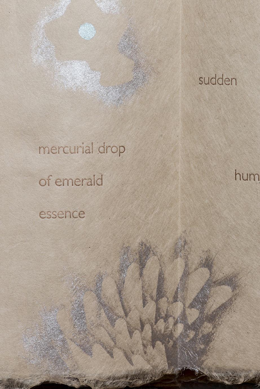 Hummingbird detail.jpg