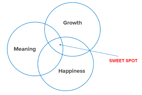 SWEETSPOT.png