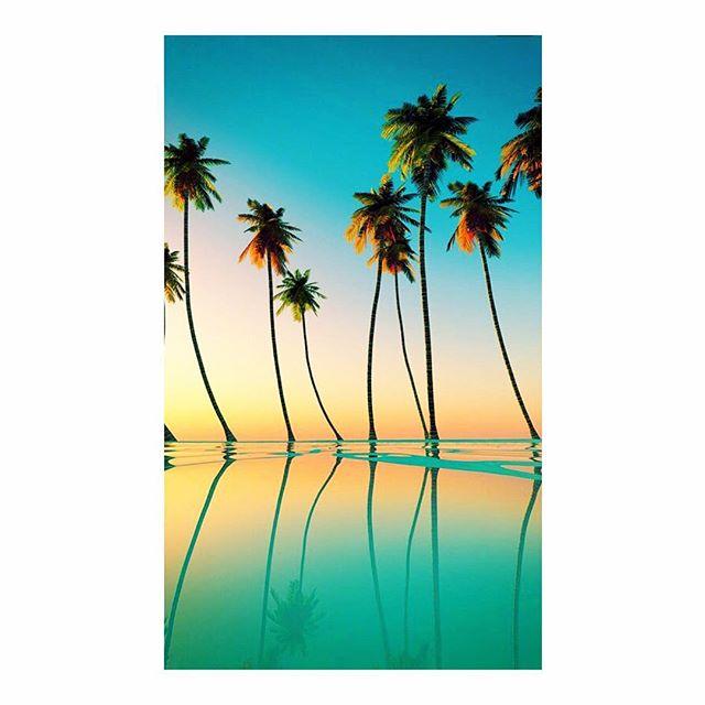 Is it summer yet? 🐠🌴🌊#summer #summertime #summerbody #summer2016 #music #muscle #body #healthylife #happy #seasons #beach #goodvibes #palmtrees