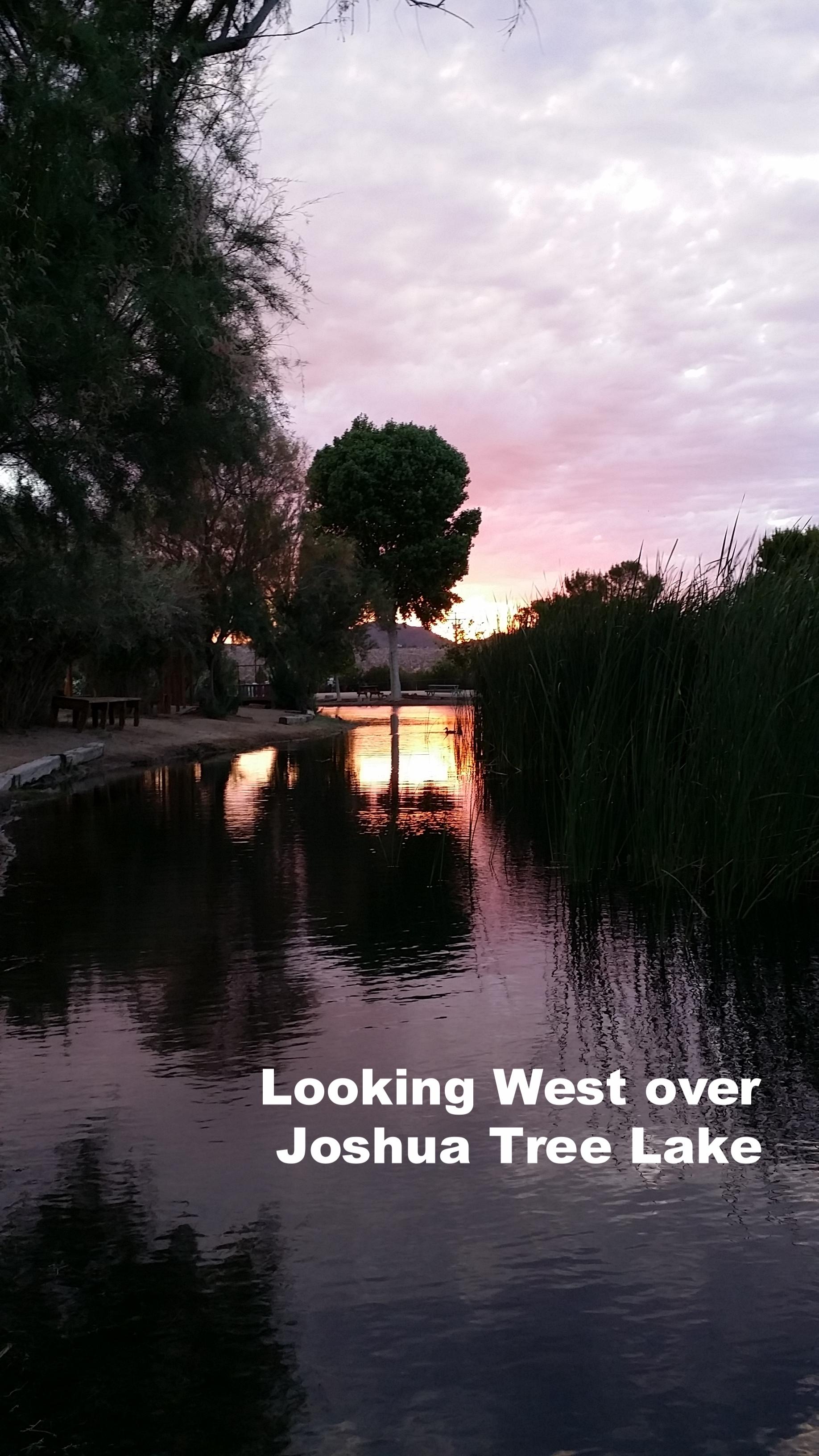 Looking West over Joshua Tree Lake.jpg