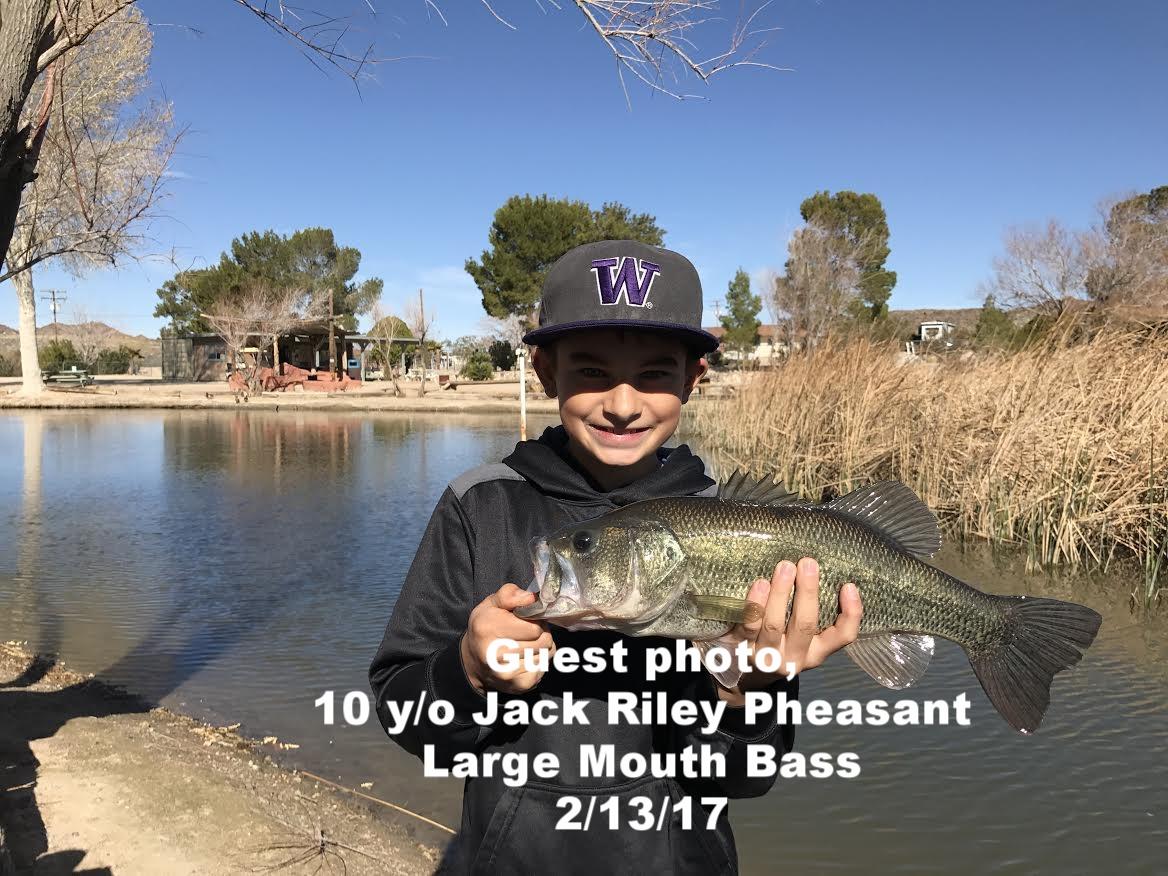 10 year old Jack Riley Pheasant.jpg