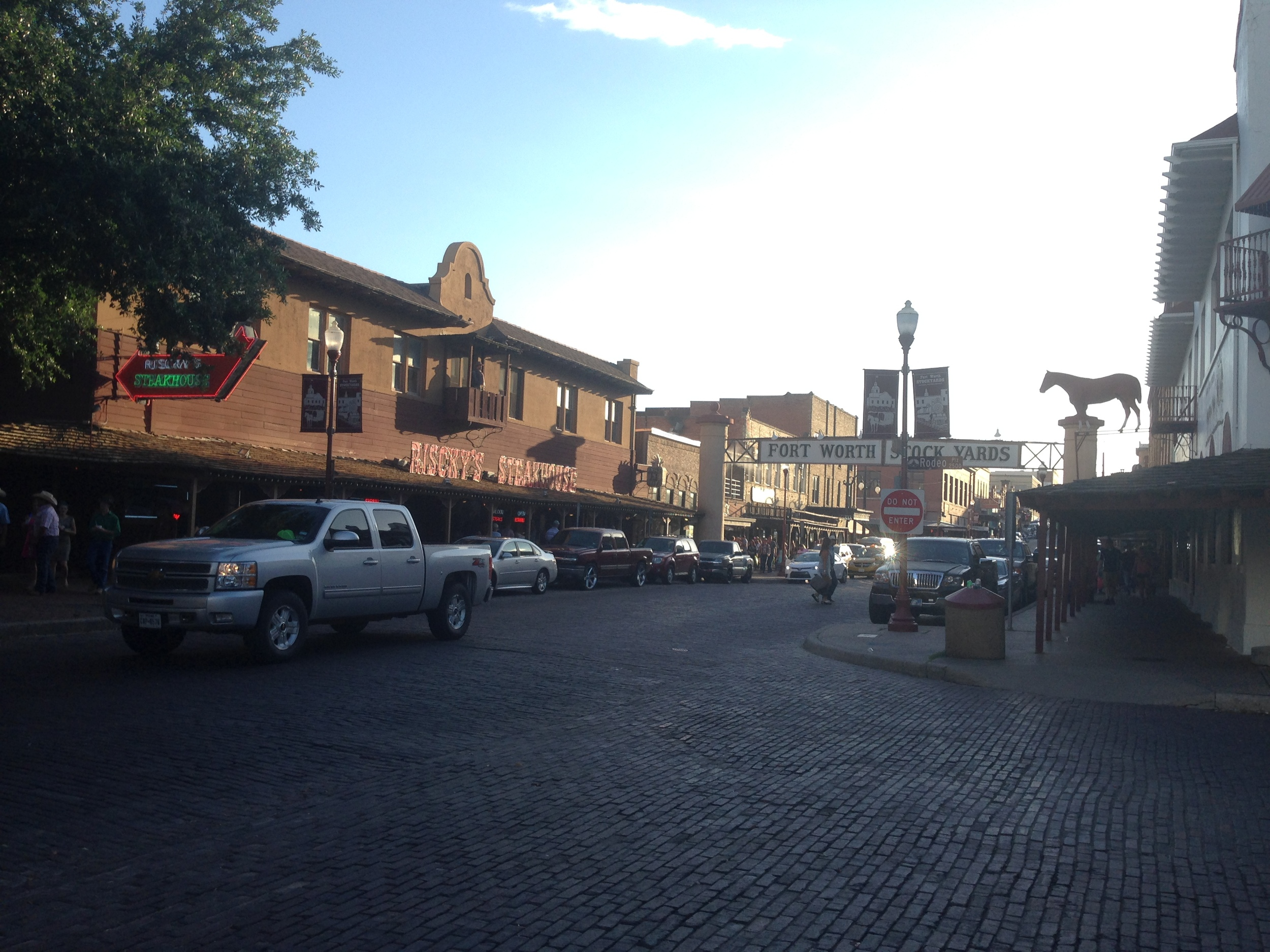 Fort Worth Stockyards, outside the rodeo. I forgot to bring my camera so these photos were just from my phone