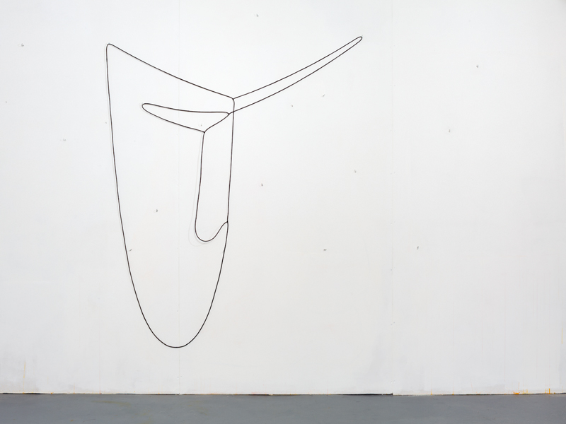 Hanging Drawing (3 Loops) , 2014, lead, rubber, acrylic paint, series of three connected loops, set of hooks, dimensions variable